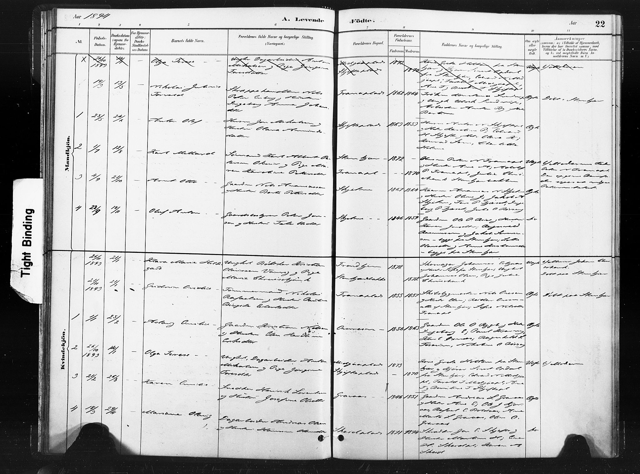 SAT, Ministerialprotokoller, klokkerbøker og fødselsregistre - Nord-Trøndelag, 736/L0361: Ministerialbok nr. 736A01, 1884-1906, s. 22
