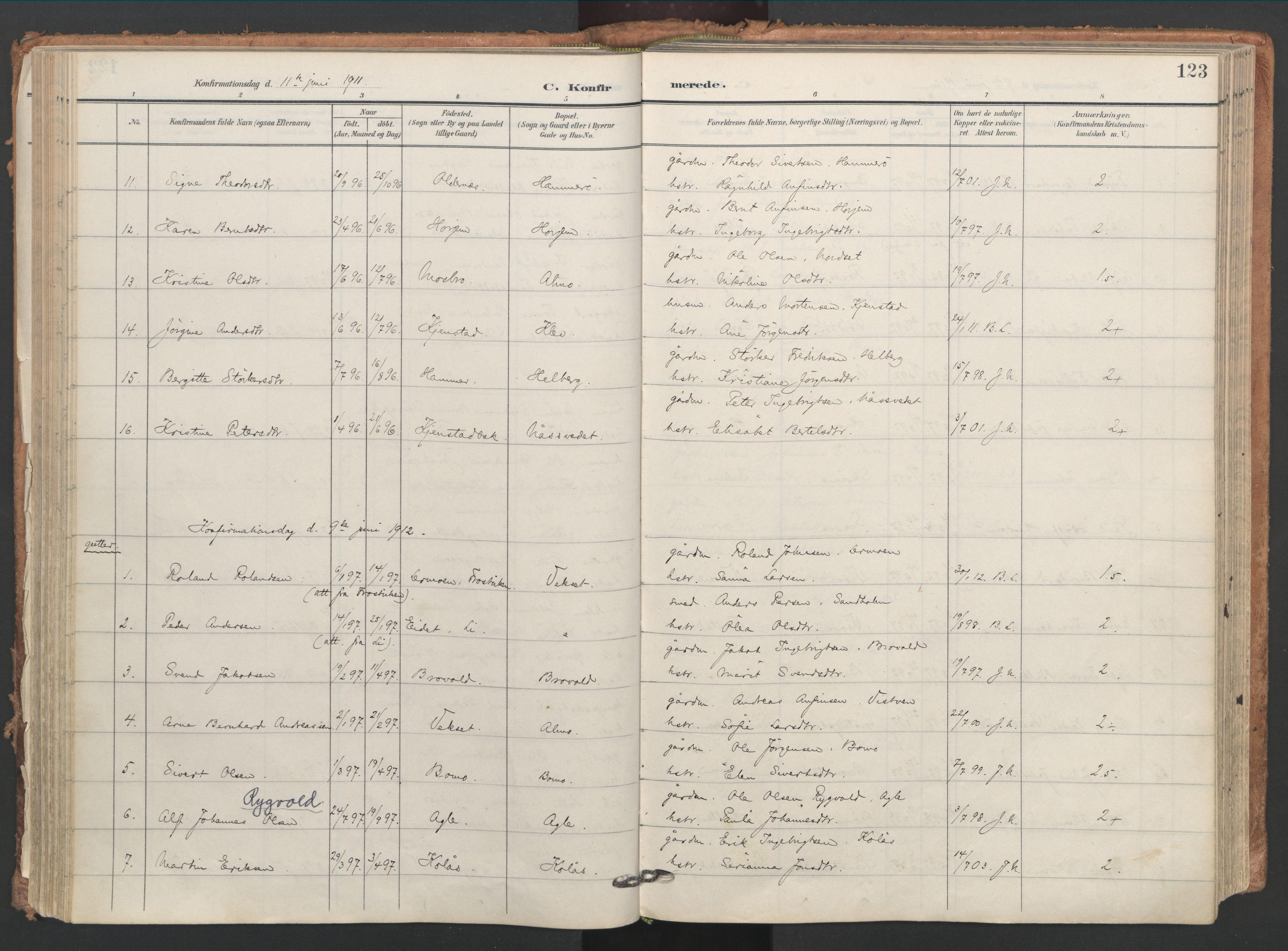 SAT, Ministerialprotokoller, klokkerbøker og fødselsregistre - Nord-Trøndelag, 749/L0477: Ministerialbok nr. 749A11, 1902-1927, s. 123