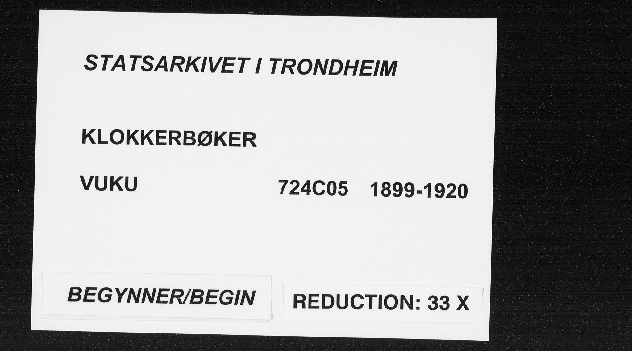 SAT, Ministerialprotokoller, klokkerbøker og fødselsregistre - Nord-Trøndelag, 724/L0269: Klokkerbok nr. 724C05, 1899-1920