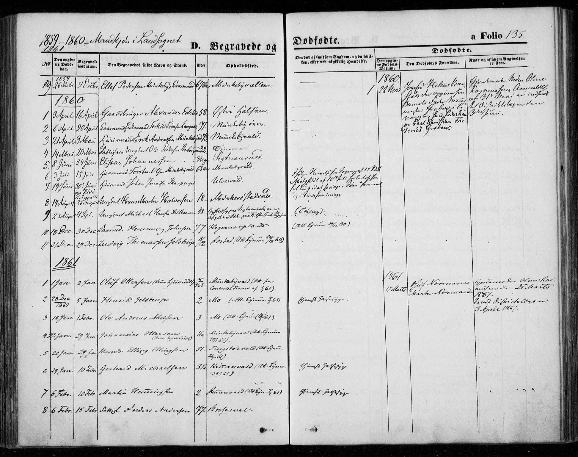 SAT, Ministerialprotokoller, klokkerbøker og fødselsregistre - Nord-Trøndelag, 720/L0184: Ministerialbok nr. 720A02 /2, 1855-1863, s. 135