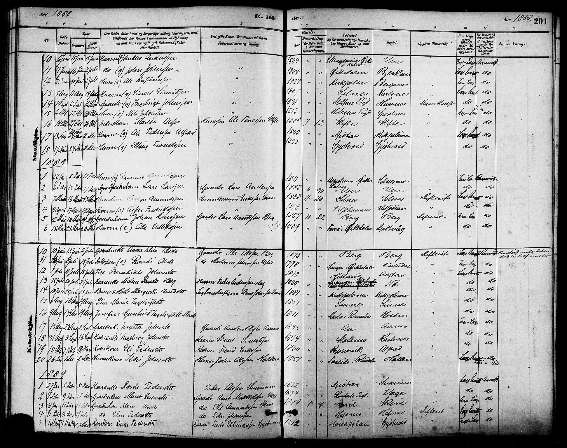 SAT, Ministerialprotokoller, klokkerbøker og fødselsregistre - Sør-Trøndelag, 630/L0496: Ministerialbok nr. 630A09, 1879-1895, s. 291