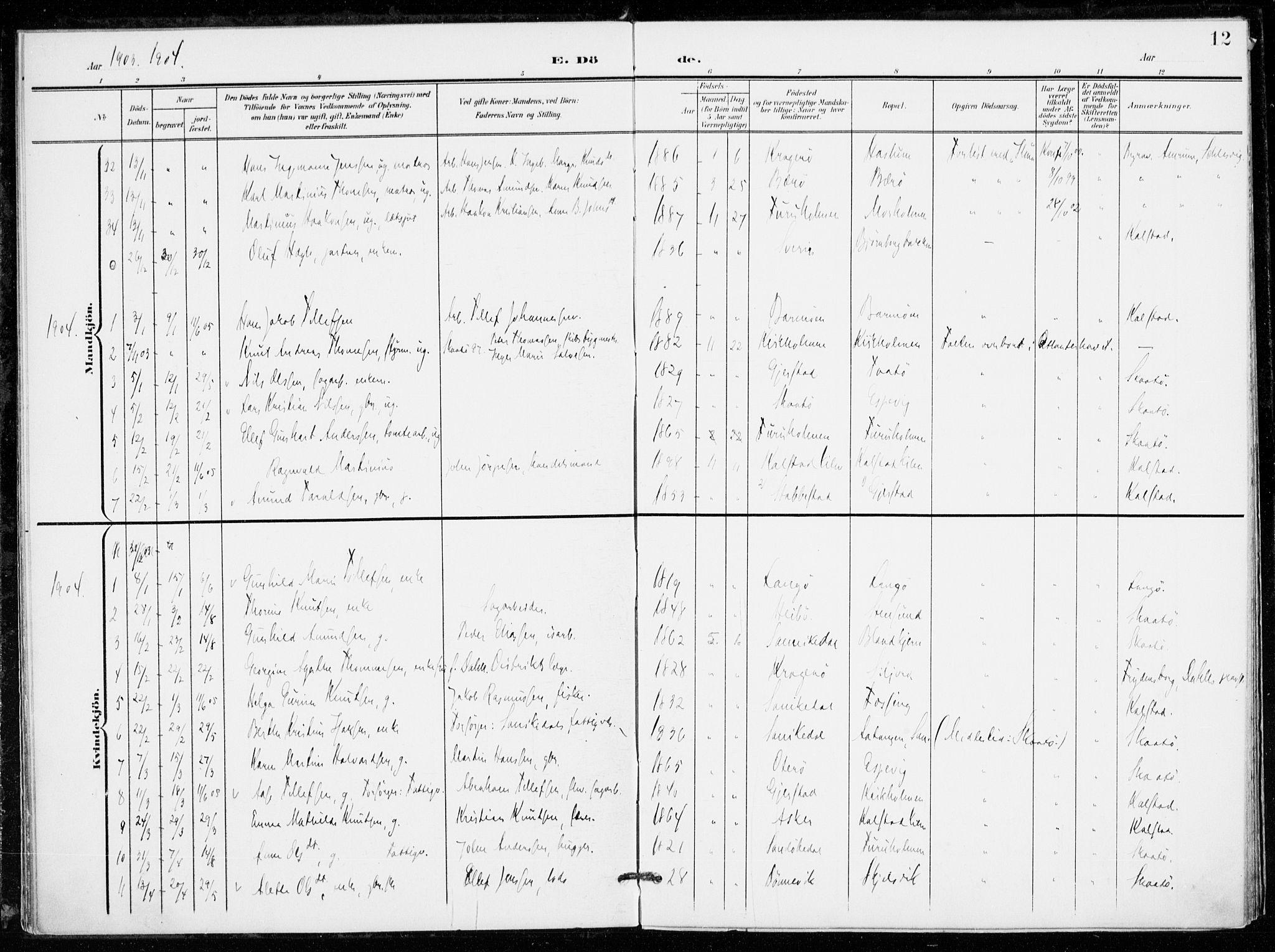 SAKO, Skåtøy kirkebøker, F/Fa/L0005: Ministerialbok nr. I 5, 1901-1923, s. 12