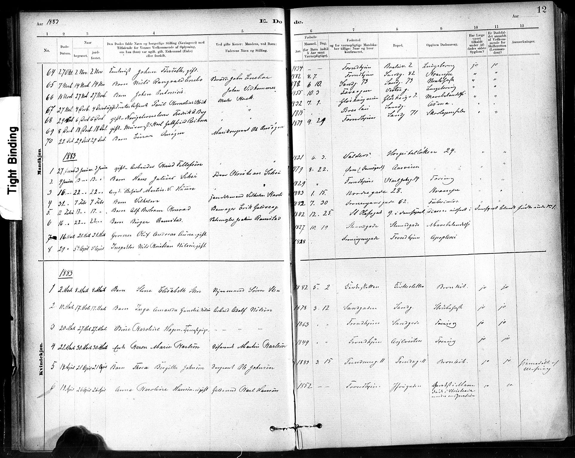 SAT, Ministerialprotokoller, klokkerbøker og fødselsregistre - Sør-Trøndelag, 602/L0120: Ministerialbok nr. 602A18, 1880-1913, s. 12