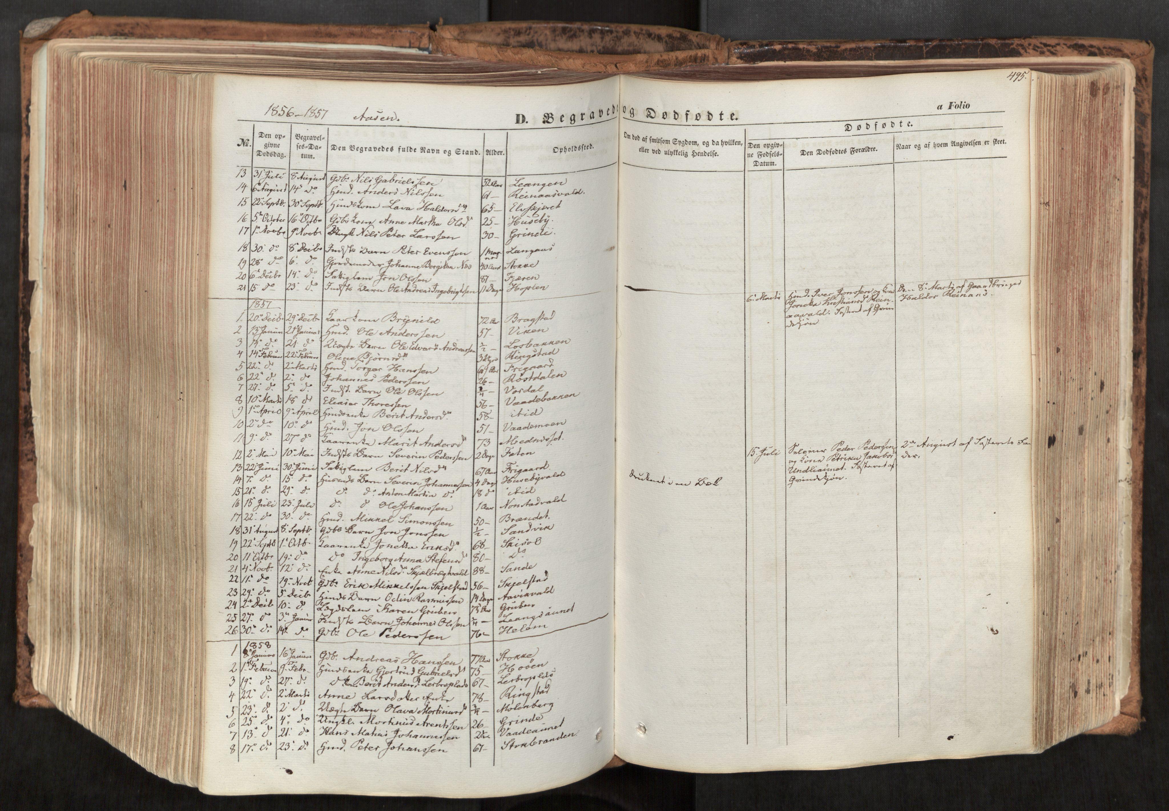 SAT, Ministerialprotokoller, klokkerbøker og fødselsregistre - Nord-Trøndelag, 713/L0116: Ministerialbok nr. 713A07, 1850-1877, s. 495