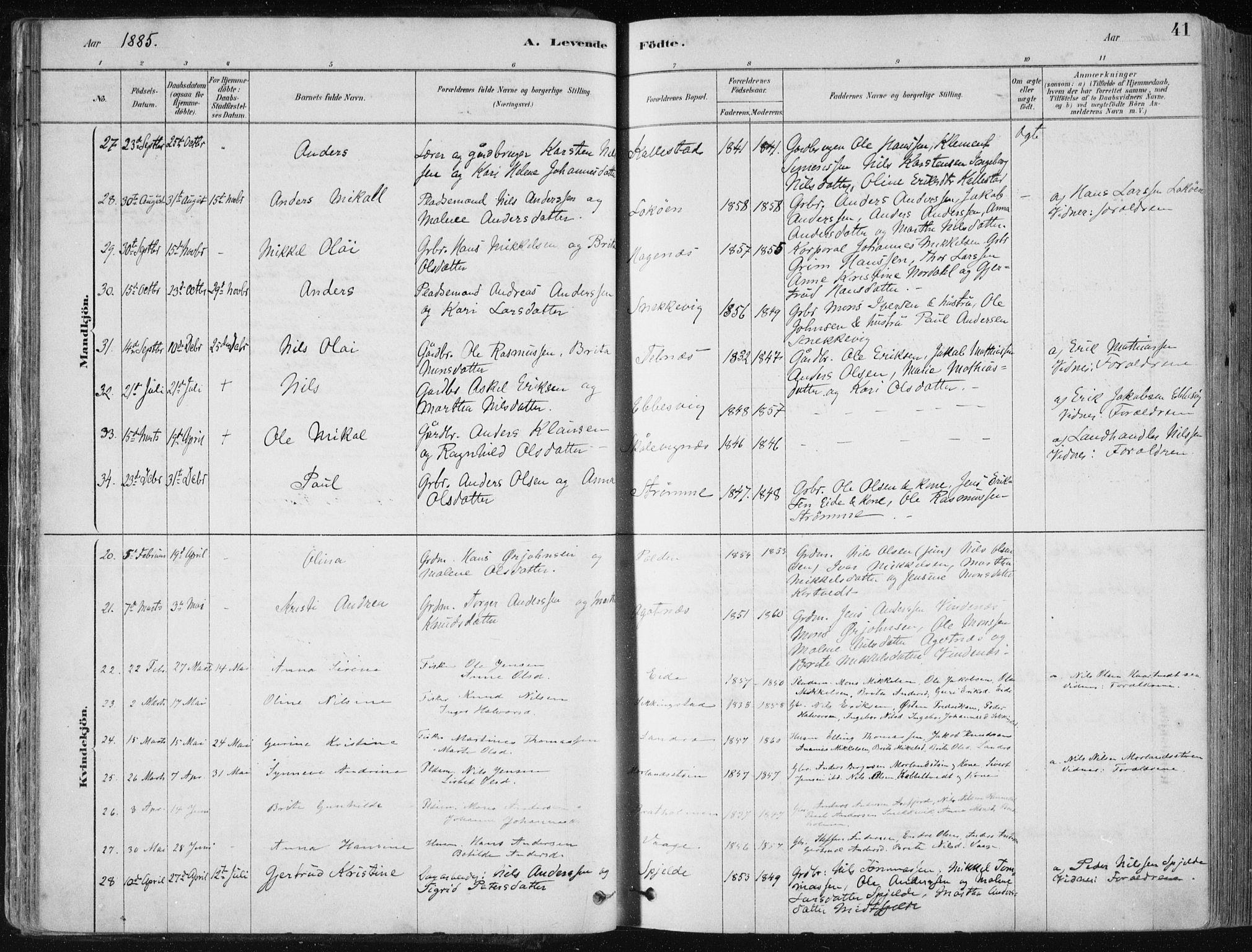 SAB, Fjell sokneprestembete, H/Haa: Ministerialbok nr. A  8, 1878-1898, s. 41
