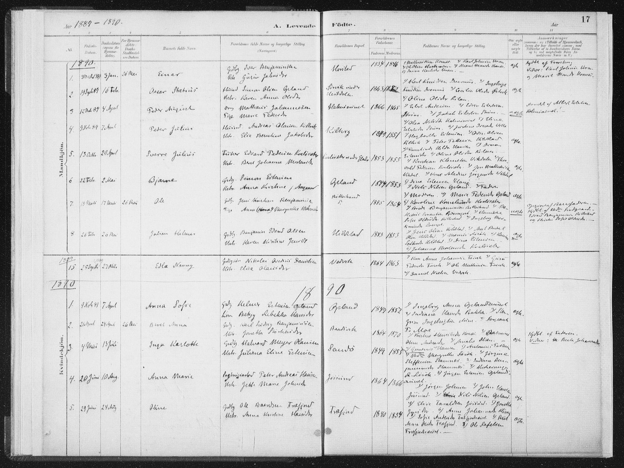 SAT, Ministerialprotokoller, klokkerbøker og fødselsregistre - Nord-Trøndelag, 771/L0597: Ministerialbok nr. 771A04, 1885-1910, s. 17