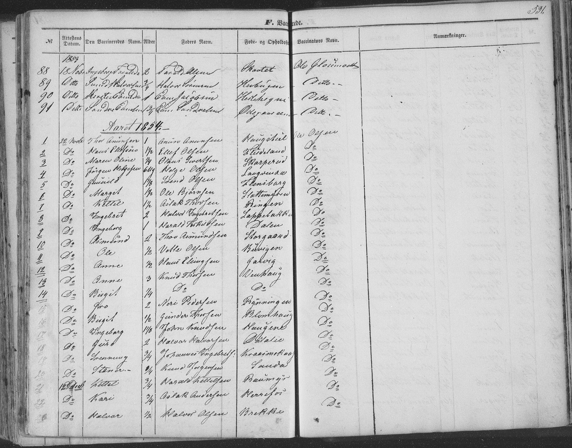 SAKO, Seljord kirkebøker, F/Fa/L012b: Ministerialbok nr. I 12B, 1850-1865, s. 531