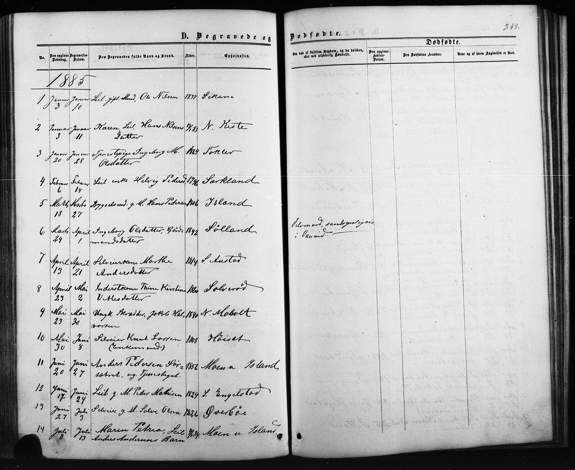 SAKO, Siljan kirkebøker, G/Ga/L0002: Klokkerbok nr. 2, 1864-1908, s. 248