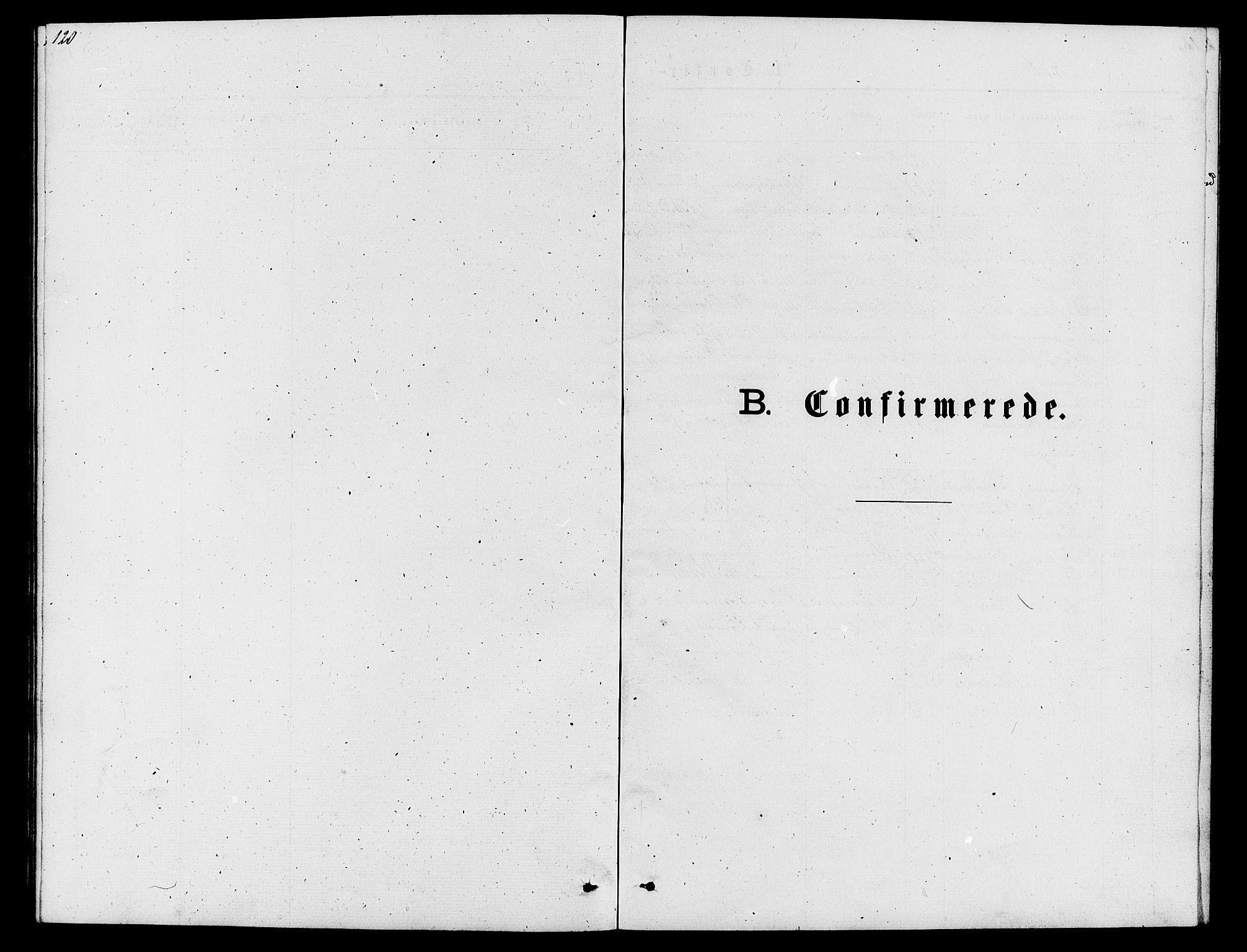 SAH, Lom prestekontor, L/L0005: Klokkerbok nr. 5, 1876-1901, s. 120-121