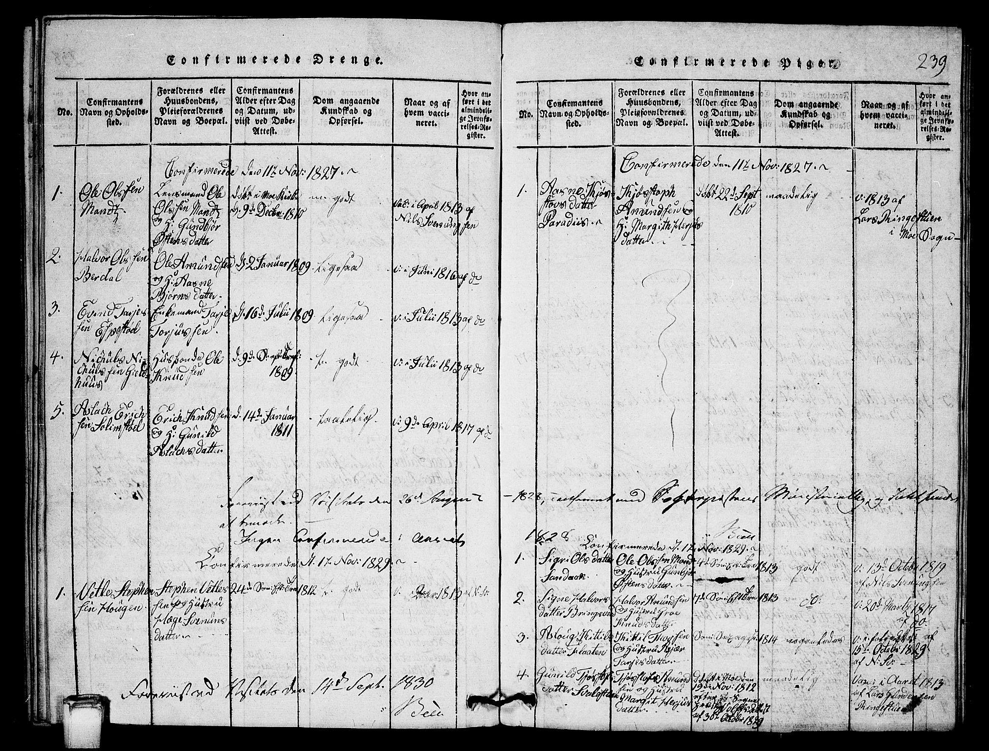 SAKO, Vinje kirkebøker, G/Gb/L0001: Klokkerbok nr. II 1, 1814-1843, s. 239