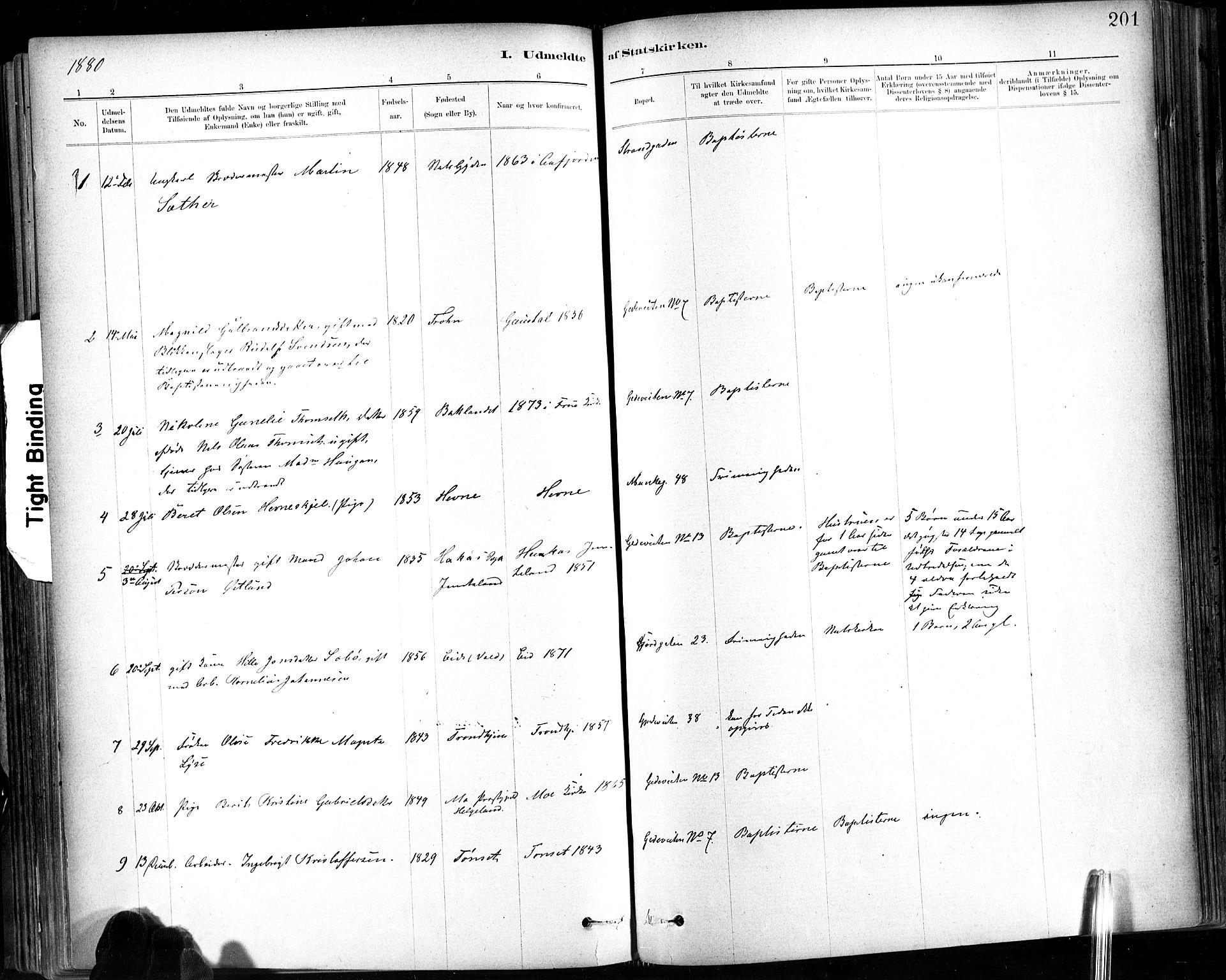 SAT, Ministerialprotokoller, klokkerbøker og fødselsregistre - Sør-Trøndelag, 602/L0120: Ministerialbok nr. 602A18, 1880-1913, s. 201