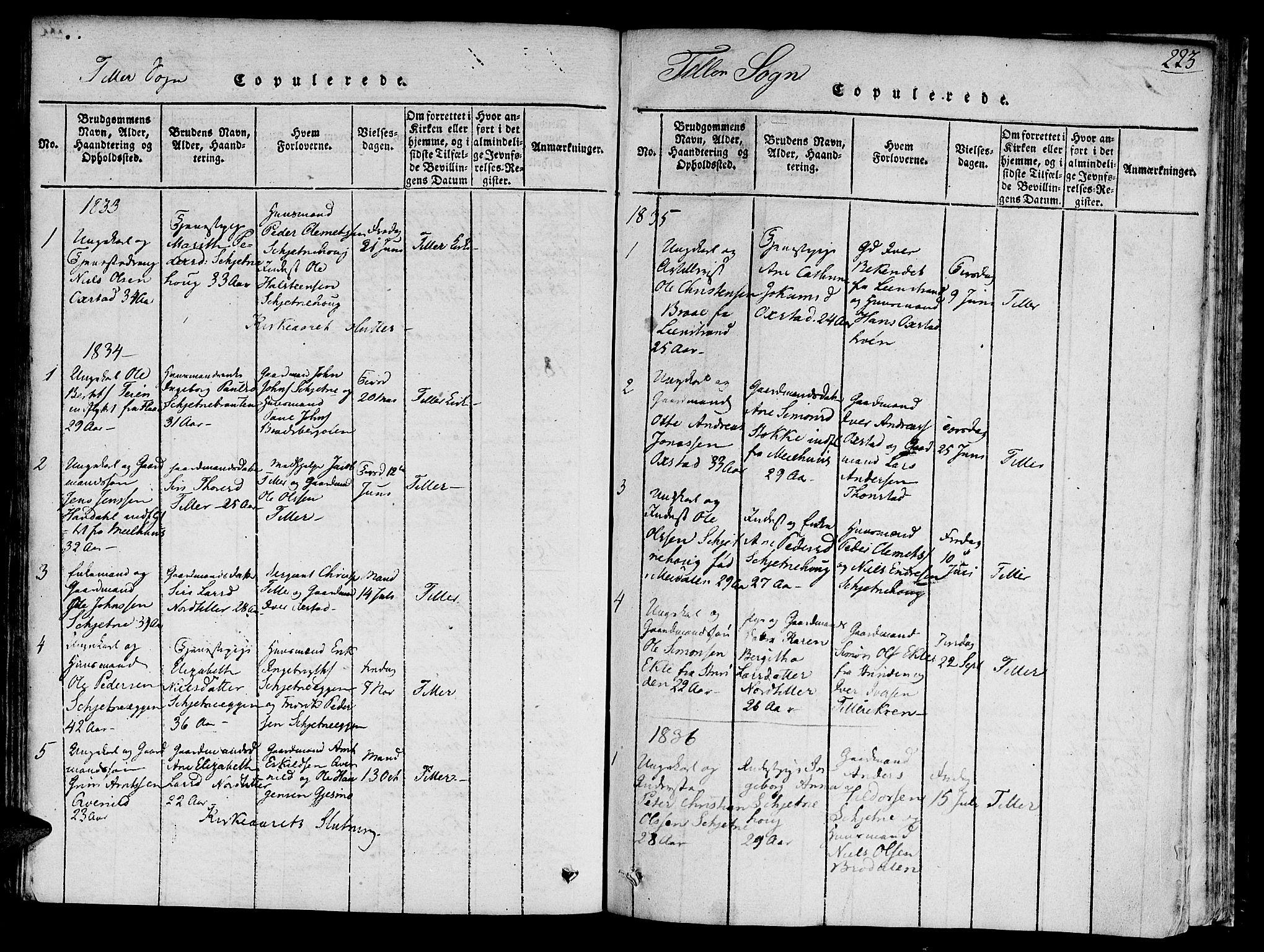 SAT, Ministerialprotokoller, klokkerbøker og fødselsregistre - Sør-Trøndelag, 618/L0440: Ministerialbok nr. 618A04 /2, 1816-1843, s. 223
