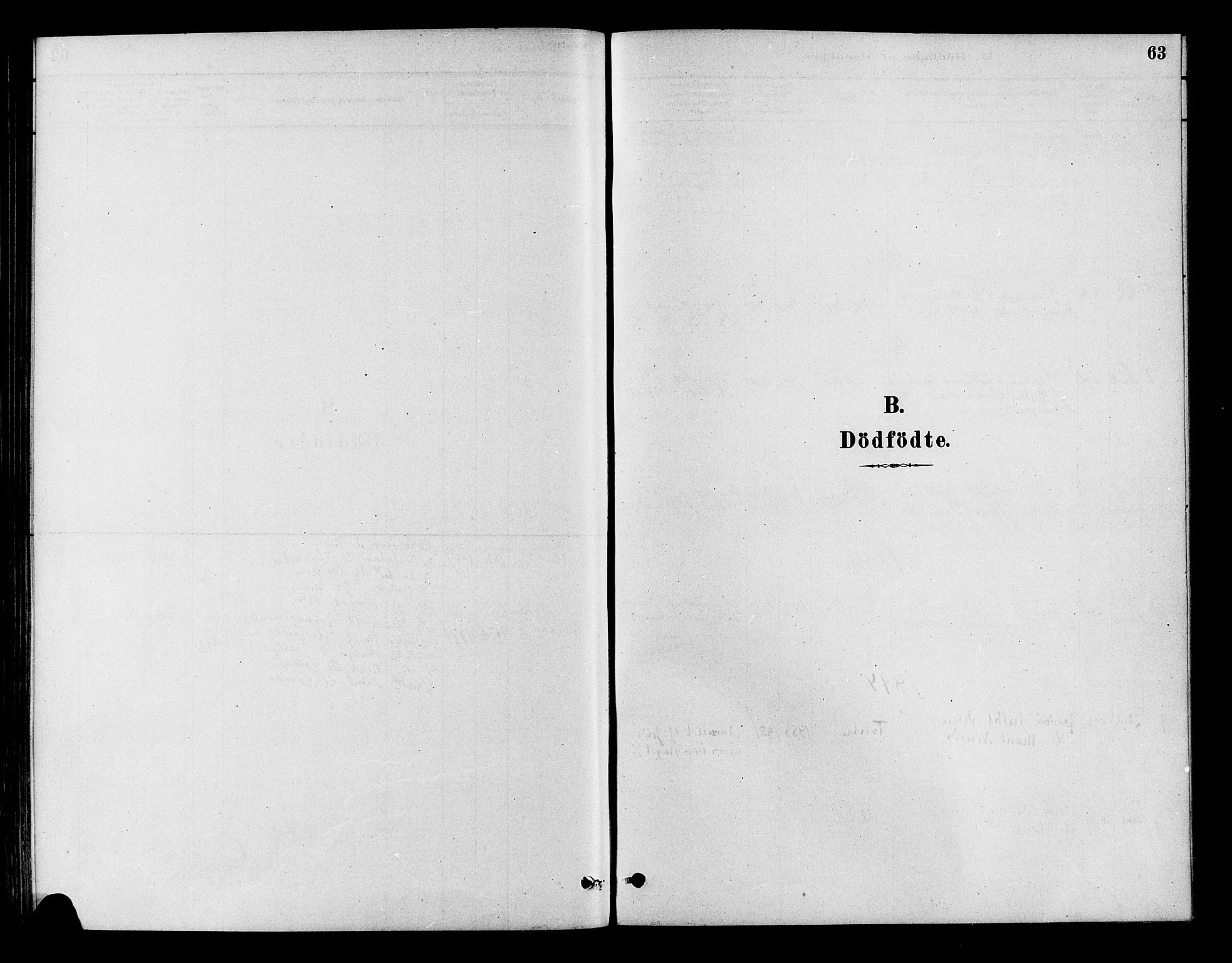 SAKO, Flesberg kirkebøker, F/Fb/L0001: Ministerialbok nr. II 1, 1879-1907, s. 63