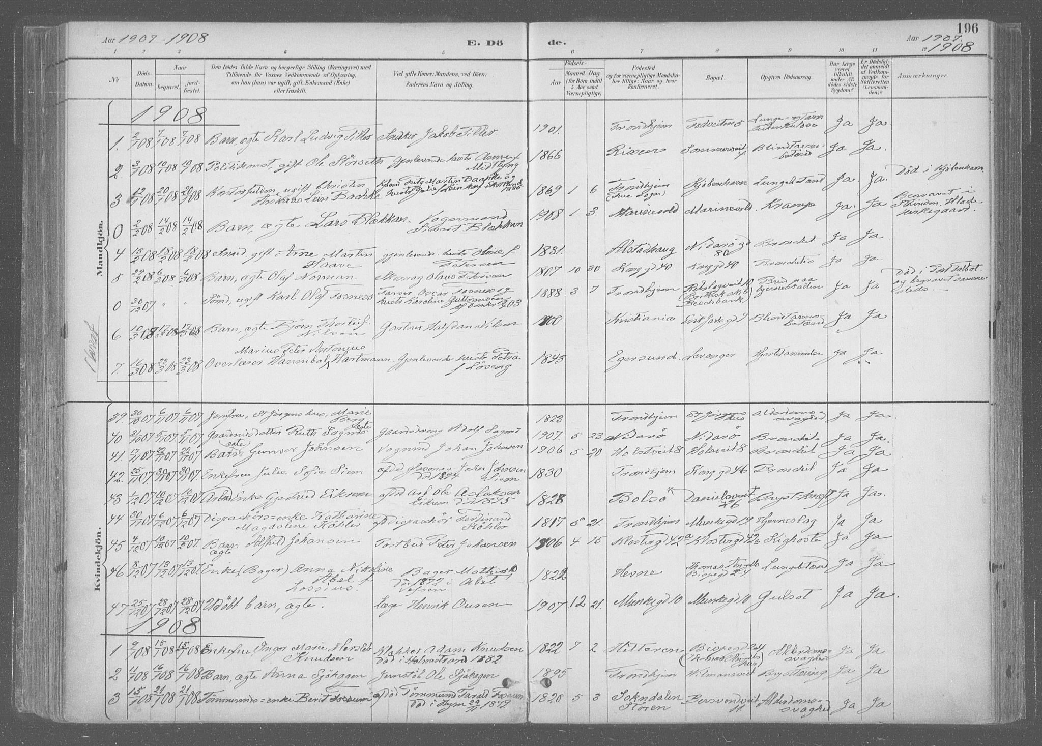 SAT, Ministerialprotokoller, klokkerbøker og fødselsregistre - Sør-Trøndelag, 601/L0064: Ministerialbok nr. 601A31, 1891-1911, s. 196