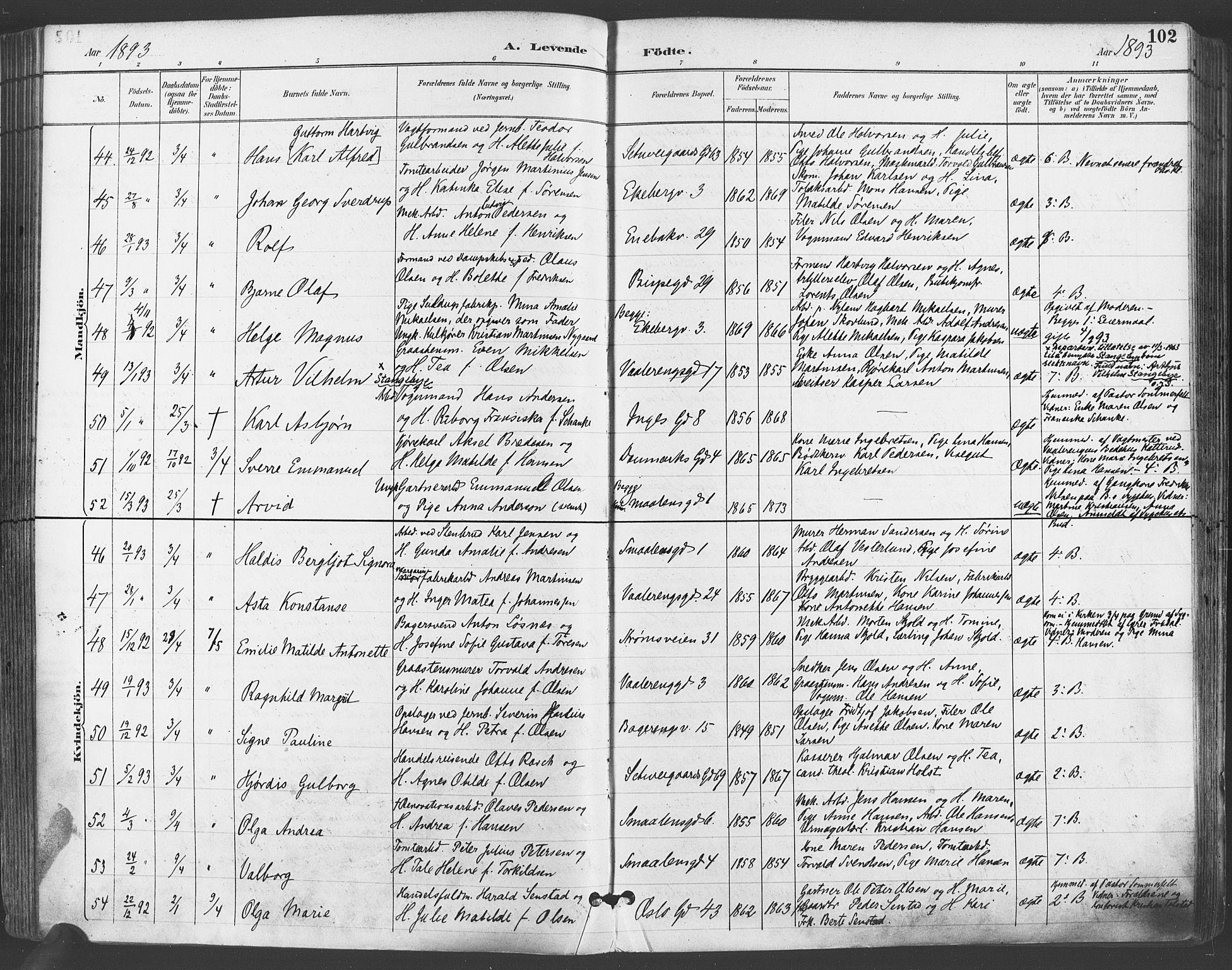 SAO, Gamlebyen prestekontor Kirkebøker, F/Fa/L0007: Ministerialbok nr. 7, 1889-1899, s. 102