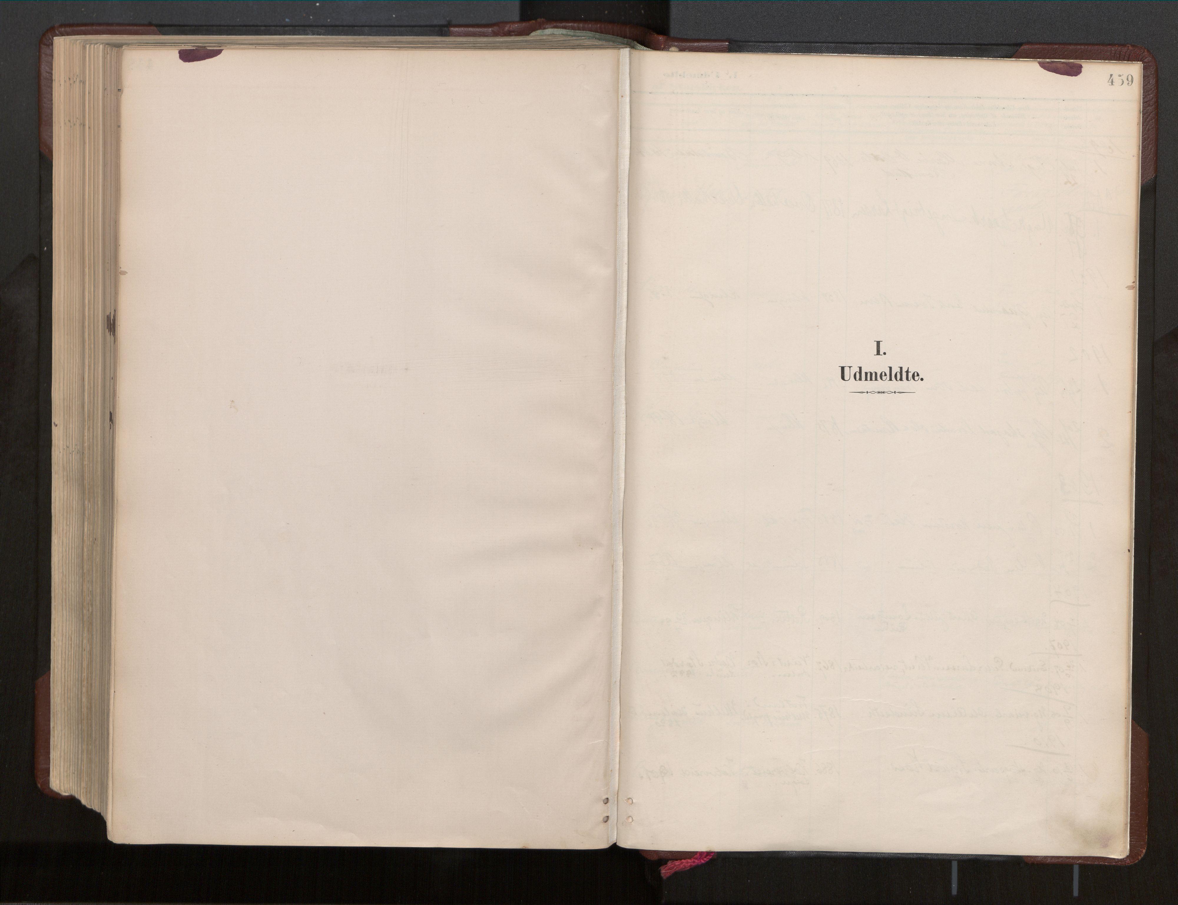 SAT, Ministerialprotokoller, klokkerbøker og fødselsregistre - Nord-Trøndelag, 770/L0589: Ministerialbok nr. 770A03, 1887-1929, s. 459