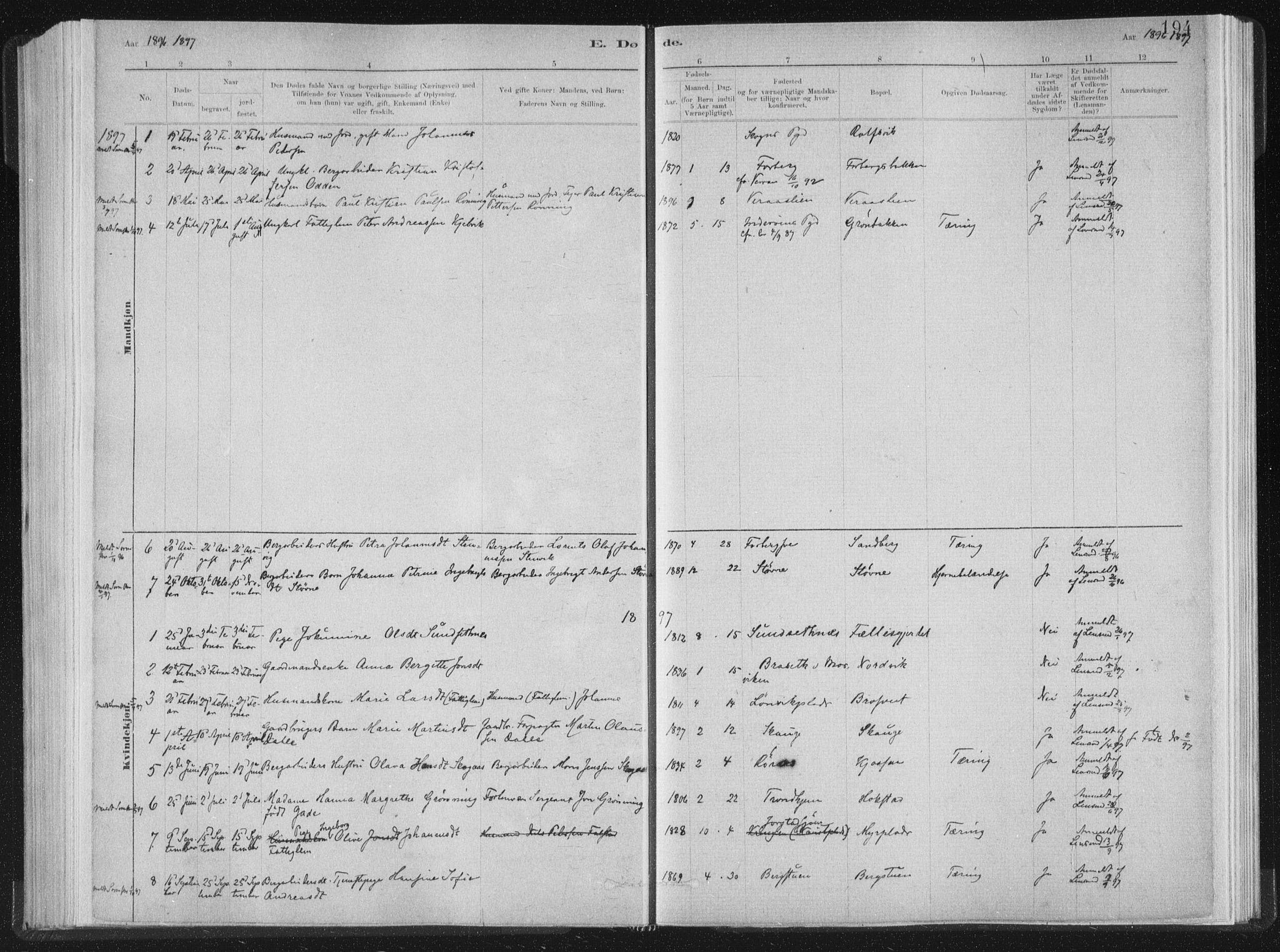 SAT, Ministerialprotokoller, klokkerbøker og fødselsregistre - Nord-Trøndelag, 722/L0220: Ministerialbok nr. 722A07, 1881-1908, s. 194