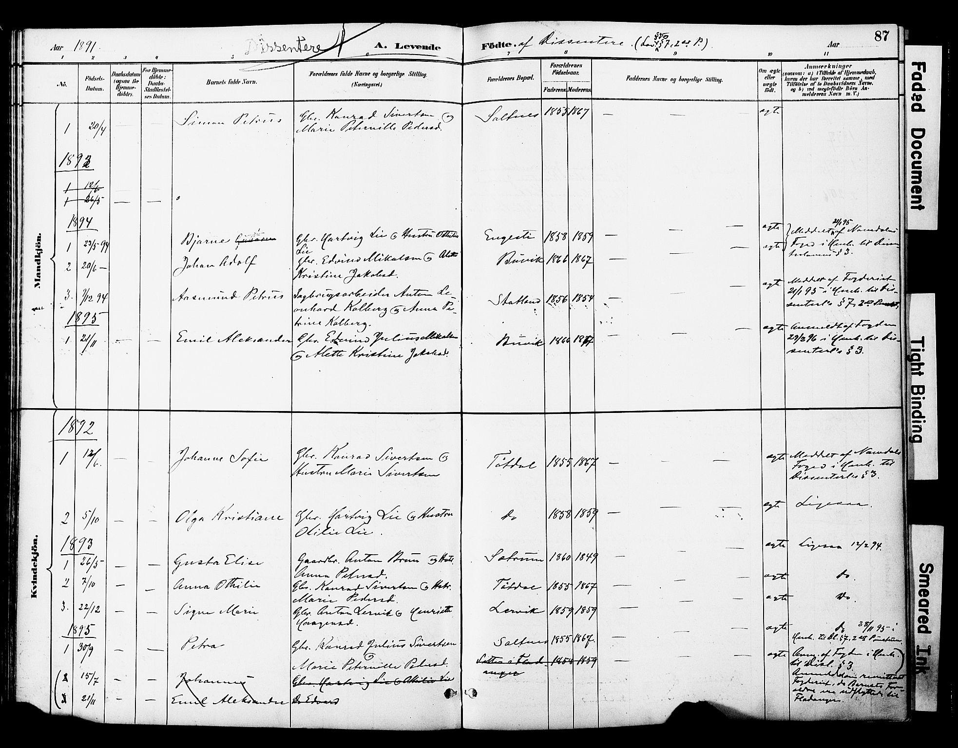 SAT, Ministerialprotokoller, klokkerbøker og fødselsregistre - Nord-Trøndelag, 774/L0628: Ministerialbok nr. 774A02, 1887-1903, s. 87