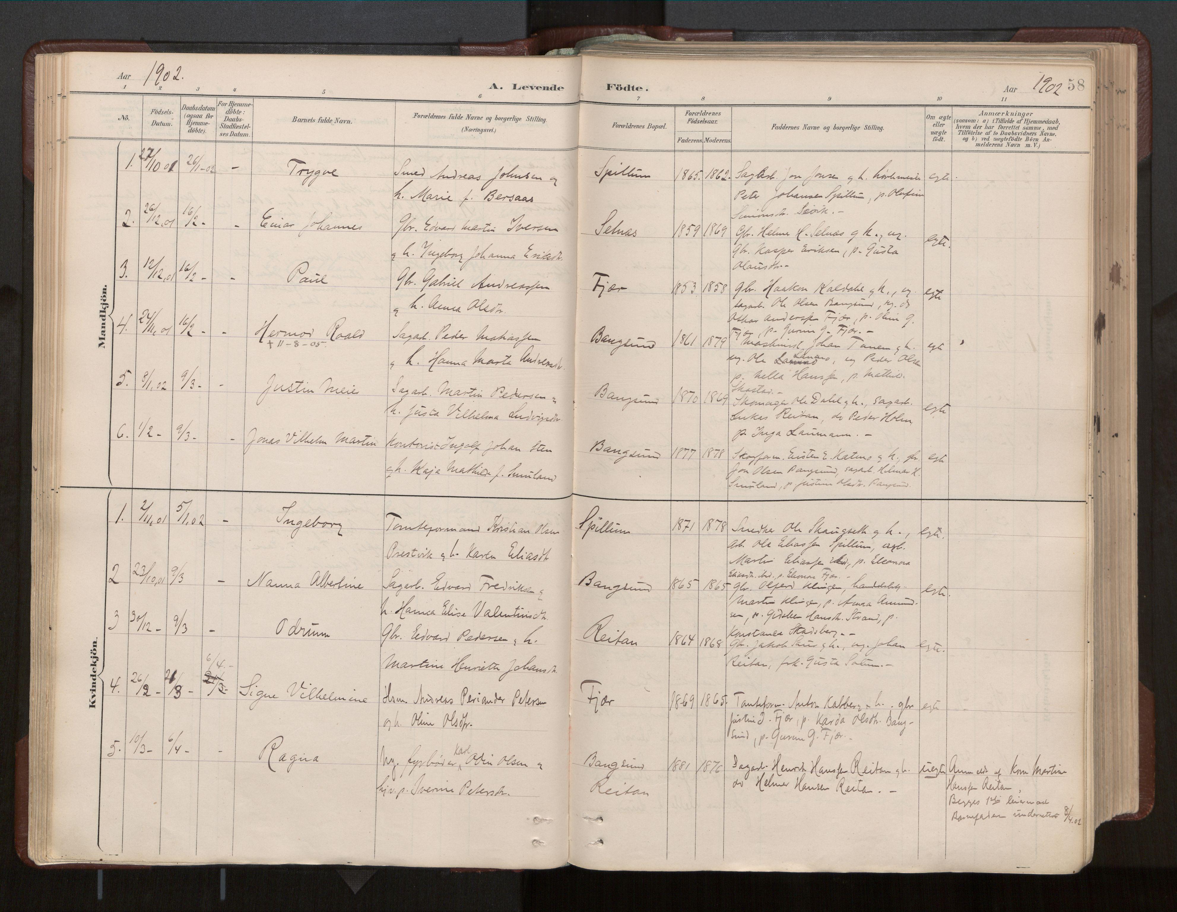 SAT, Ministerialprotokoller, klokkerbøker og fødselsregistre - Nord-Trøndelag, 770/L0589: Ministerialbok nr. 770A03, 1887-1929, s. 58