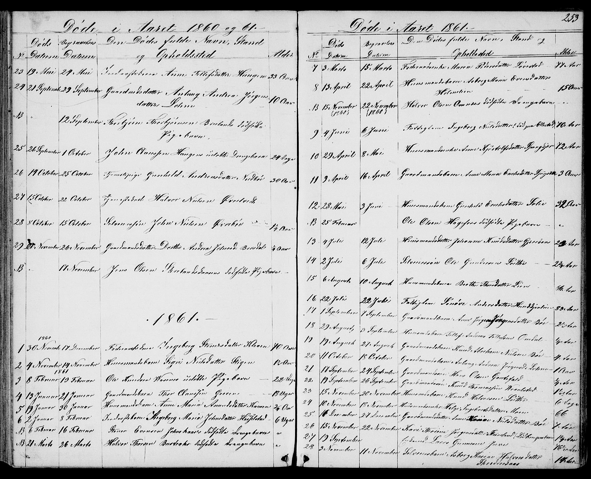 SAKO, Drangedal kirkebøker, G/Gb/L0001: Klokkerbok nr. II 1, 1856-1894, s. 253