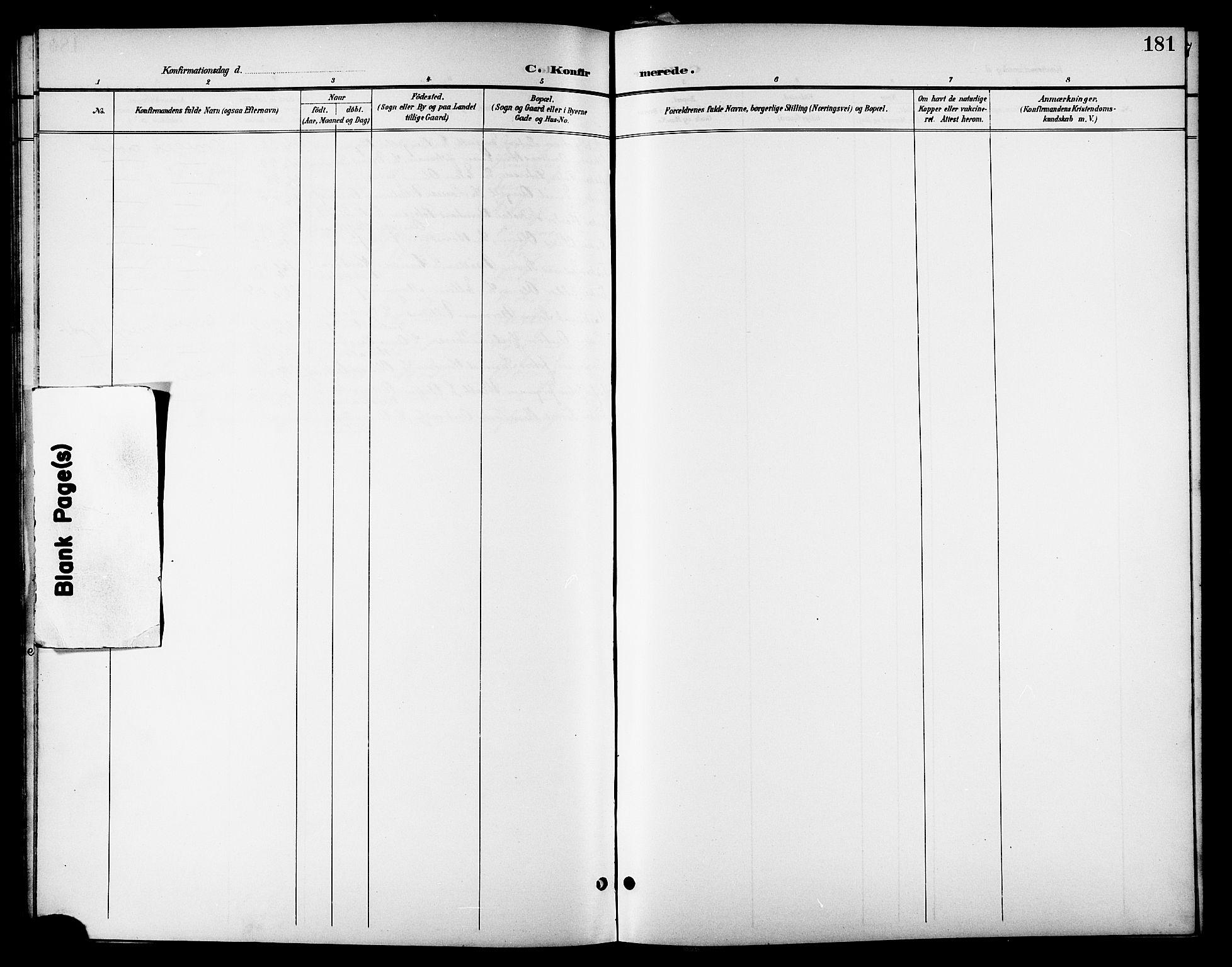 SAT, Ministerialprotokoller, klokkerbøker og fødselsregistre - Nordland, 801/L0033: Klokkerbok nr. 801C08, 1898-1910, s. 181