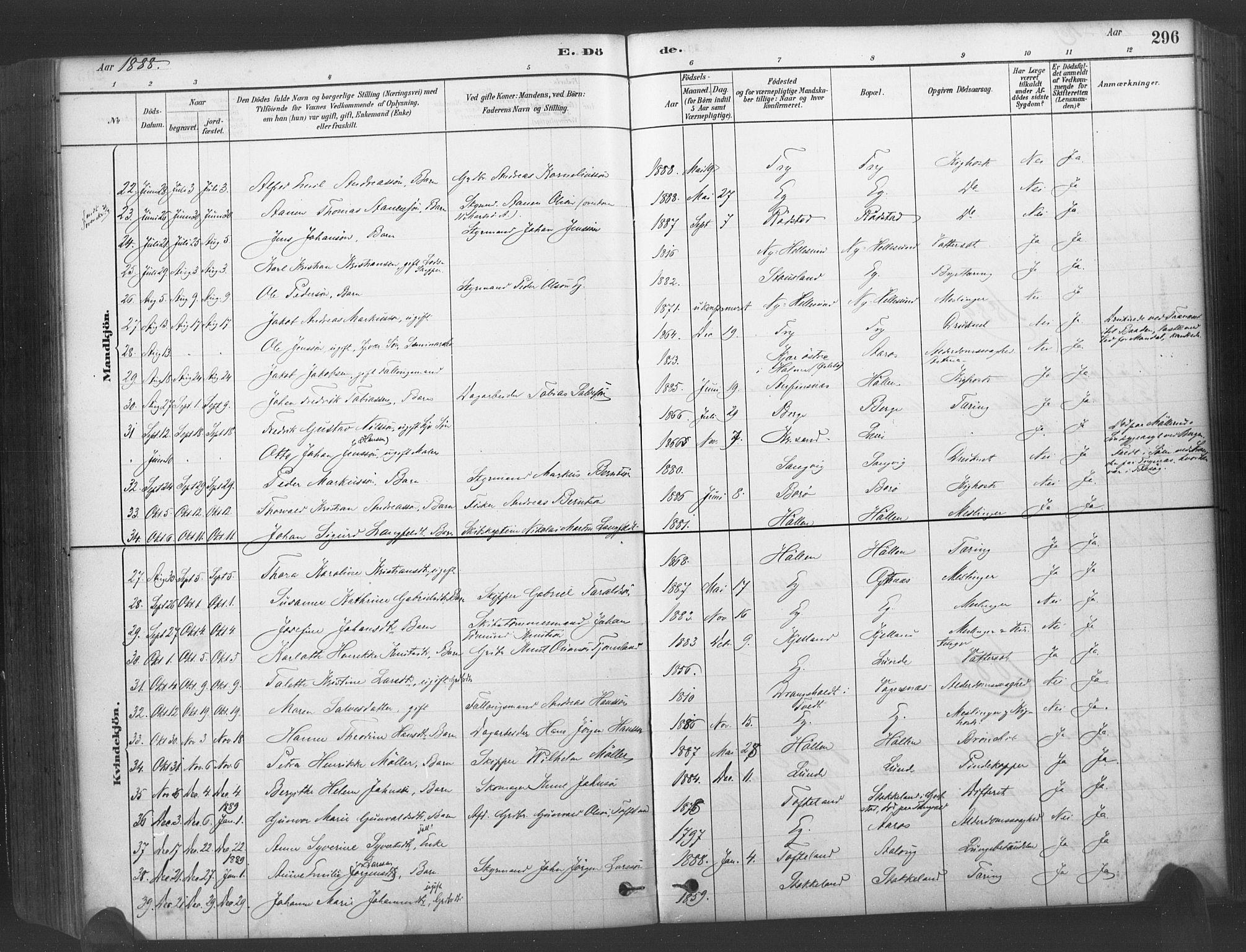 SAK, Søgne sokneprestkontor, F/Fa/Fab/L0012: Ministerialbok nr. A 12, 1880-1891, s. 296