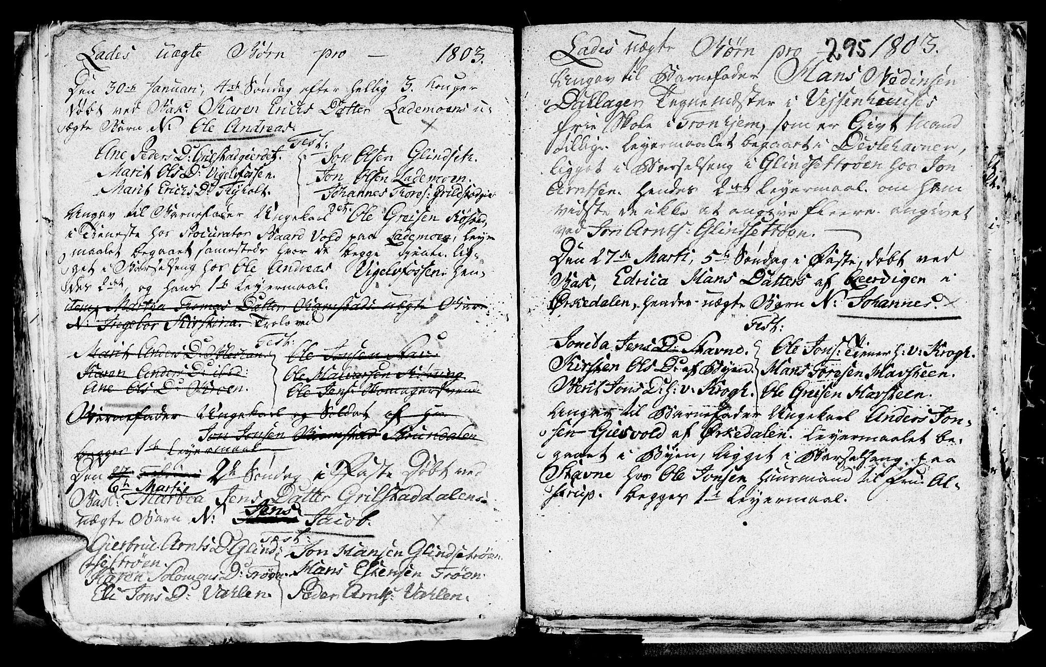 SAT, Ministerialprotokoller, klokkerbøker og fødselsregistre - Sør-Trøndelag, 606/L0305: Klokkerbok nr. 606C01, 1757-1819, s. 295