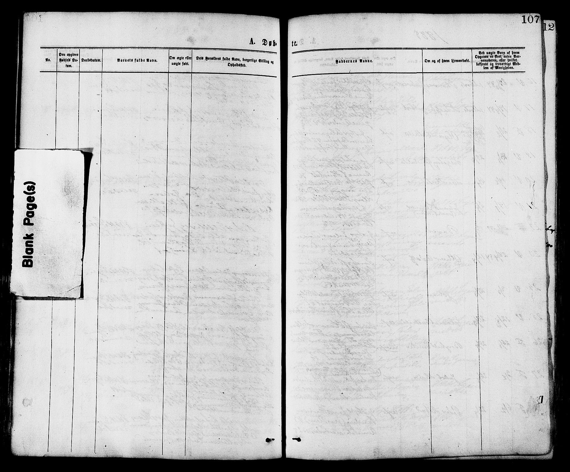 SAT, Ministerialprotokoller, klokkerbøker og fødselsregistre - Nord-Trøndelag, 773/L0616: Ministerialbok nr. 773A07, 1870-1887, s. 107