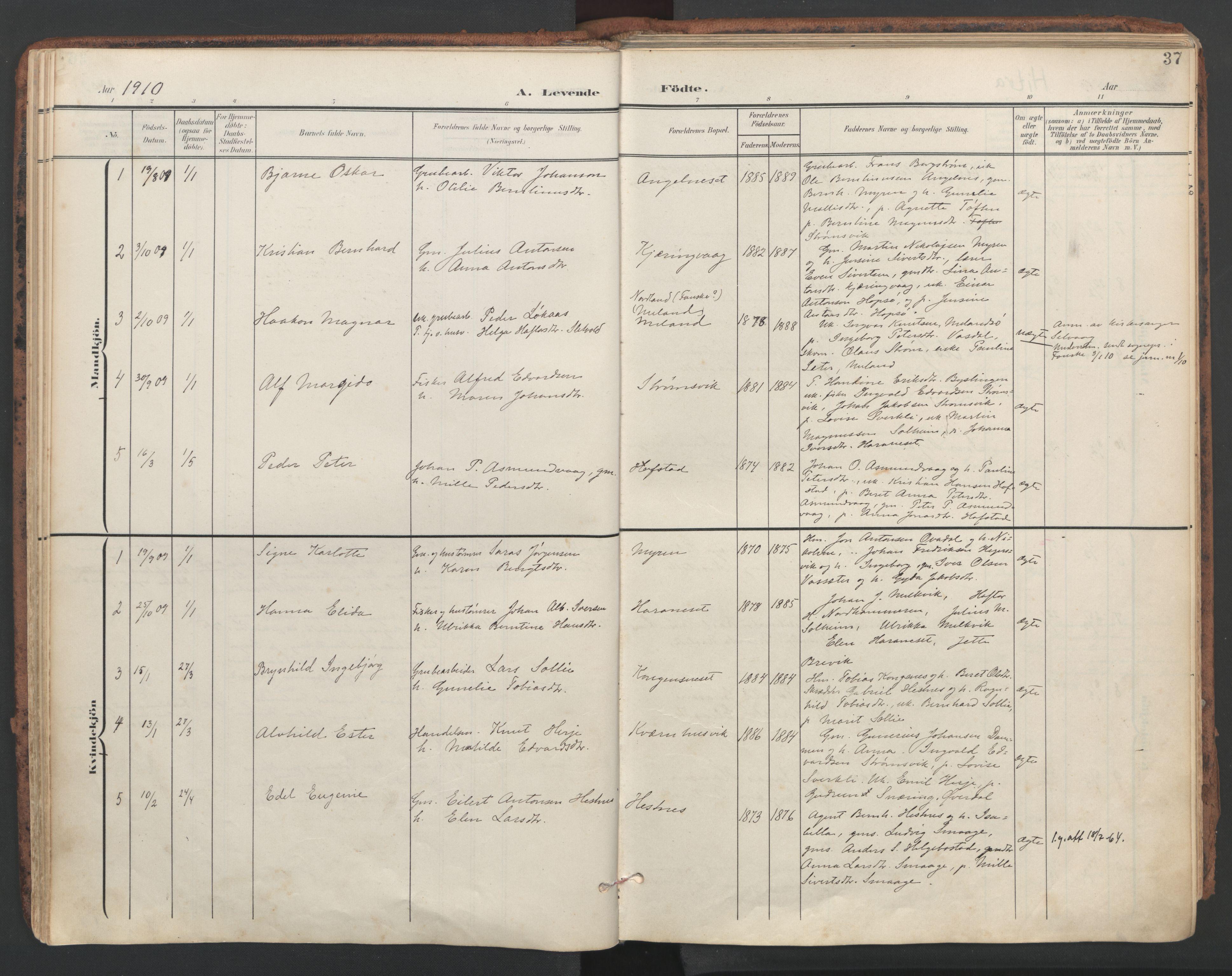 SAT, Ministerialprotokoller, klokkerbøker og fødselsregistre - Sør-Trøndelag, 634/L0537: Ministerialbok nr. 634A13, 1896-1922, s. 37