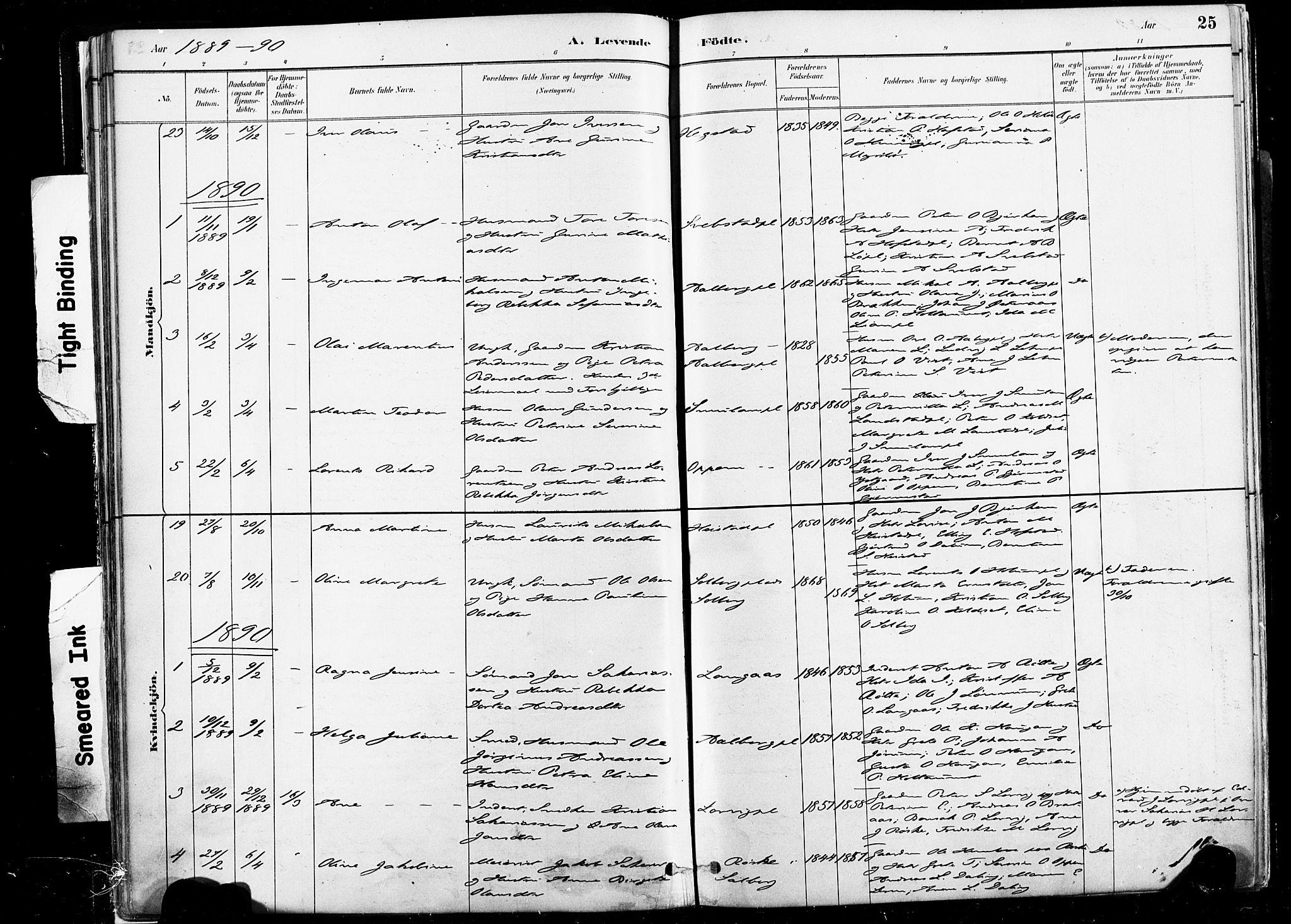 SAT, Ministerialprotokoller, klokkerbøker og fødselsregistre - Nord-Trøndelag, 735/L0351: Ministerialbok nr. 735A10, 1884-1908, s. 25
