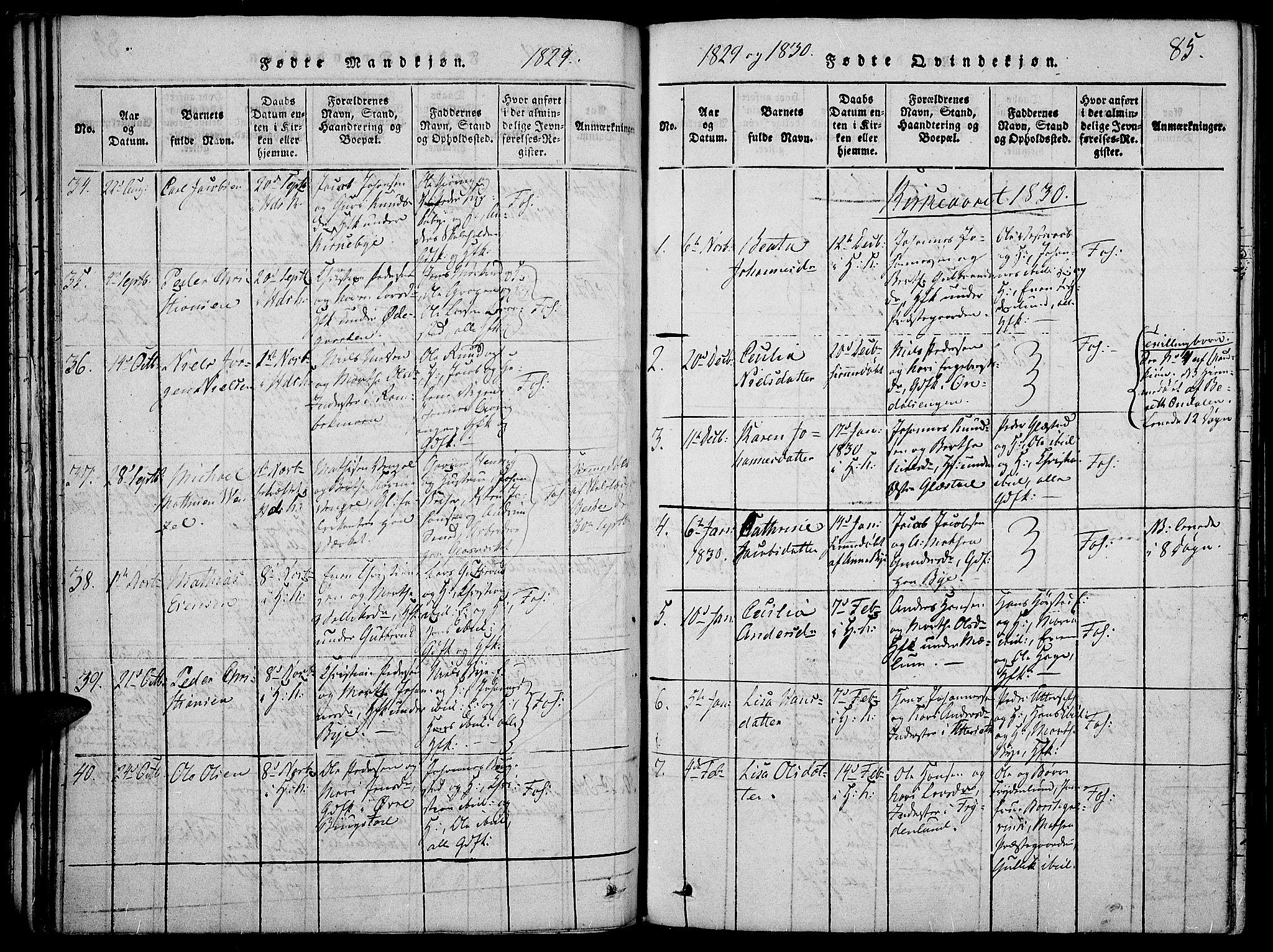 SAH, Vardal prestekontor, H/Ha/Haa/L0004: Ministerialbok nr. 4, 1814-1831, s. 85