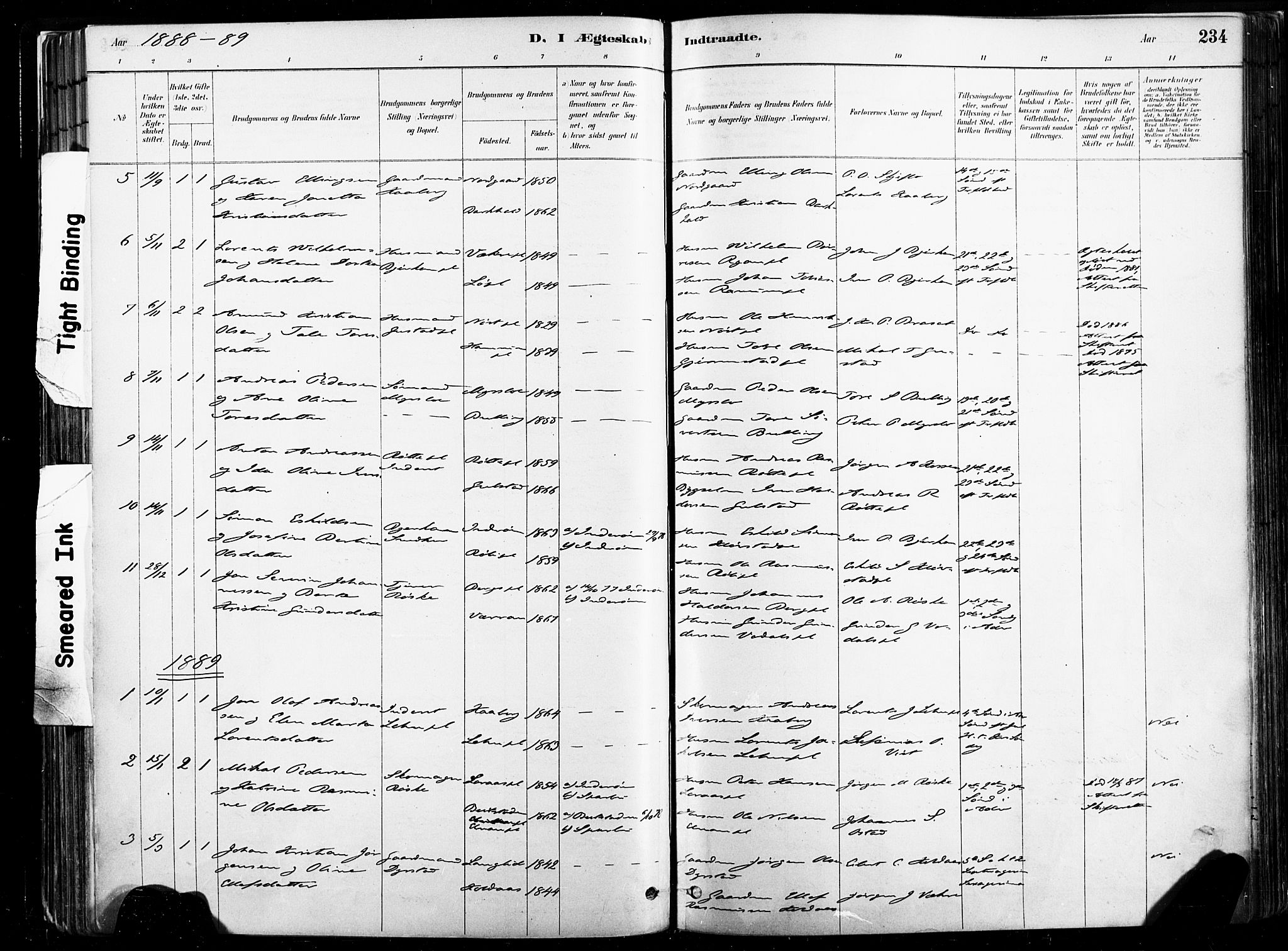 SAT, Ministerialprotokoller, klokkerbøker og fødselsregistre - Nord-Trøndelag, 735/L0351: Ministerialbok nr. 735A10, 1884-1908, s. 234