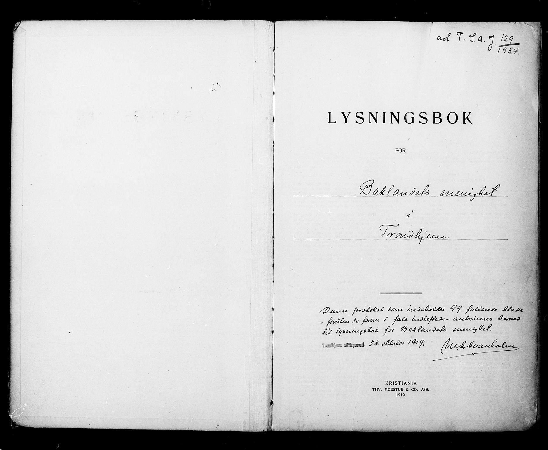 SAT, Ministerialprotokoller, klokkerbøker og fødselsregistre - Sør-Trøndelag, 604/L0196: Lysningsprotokoll nr. 604A17, 1919-1927