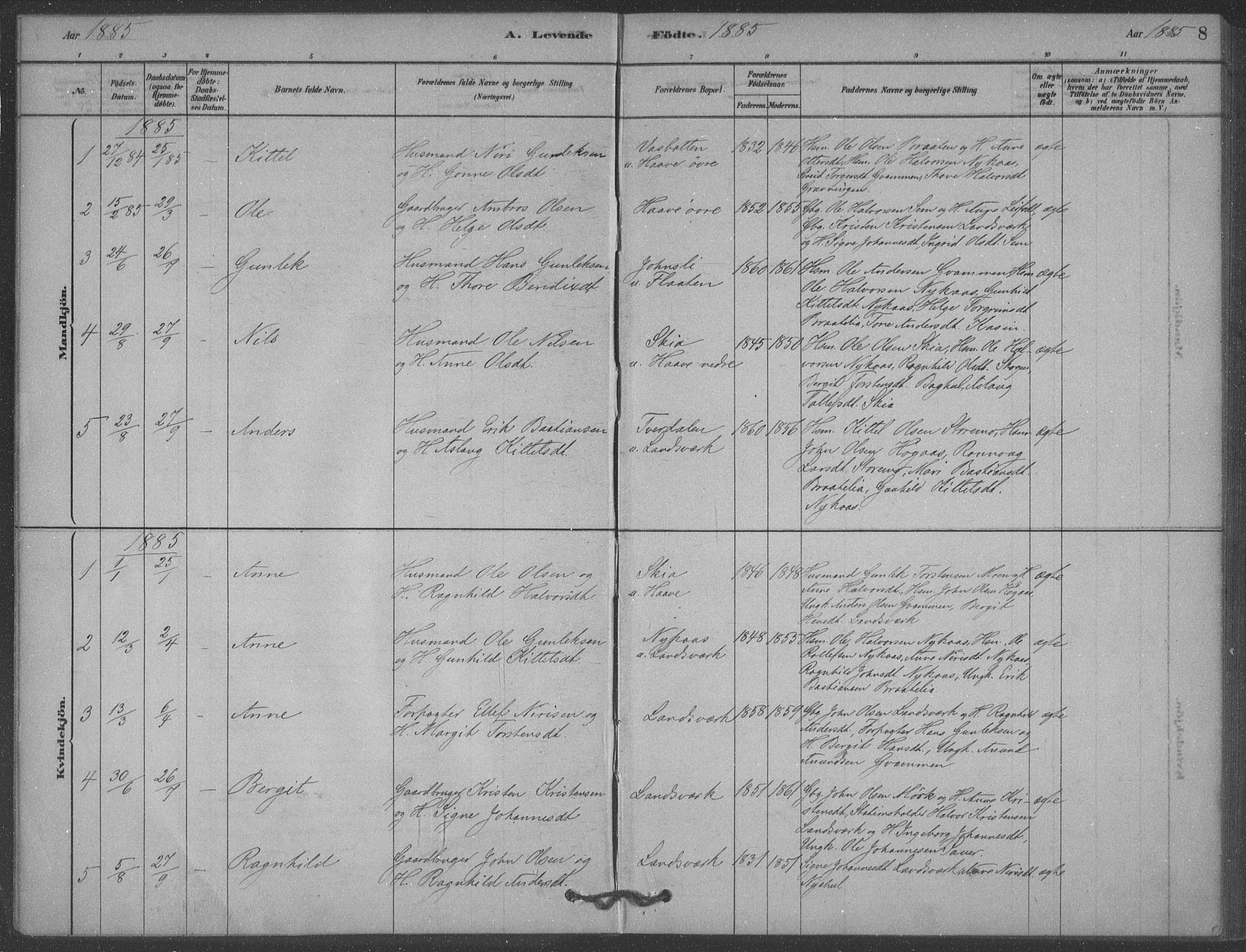SAKO, Heddal kirkebøker, F/Fb/L0002: Ministerialbok nr. II 2, 1878-1913, s. 8