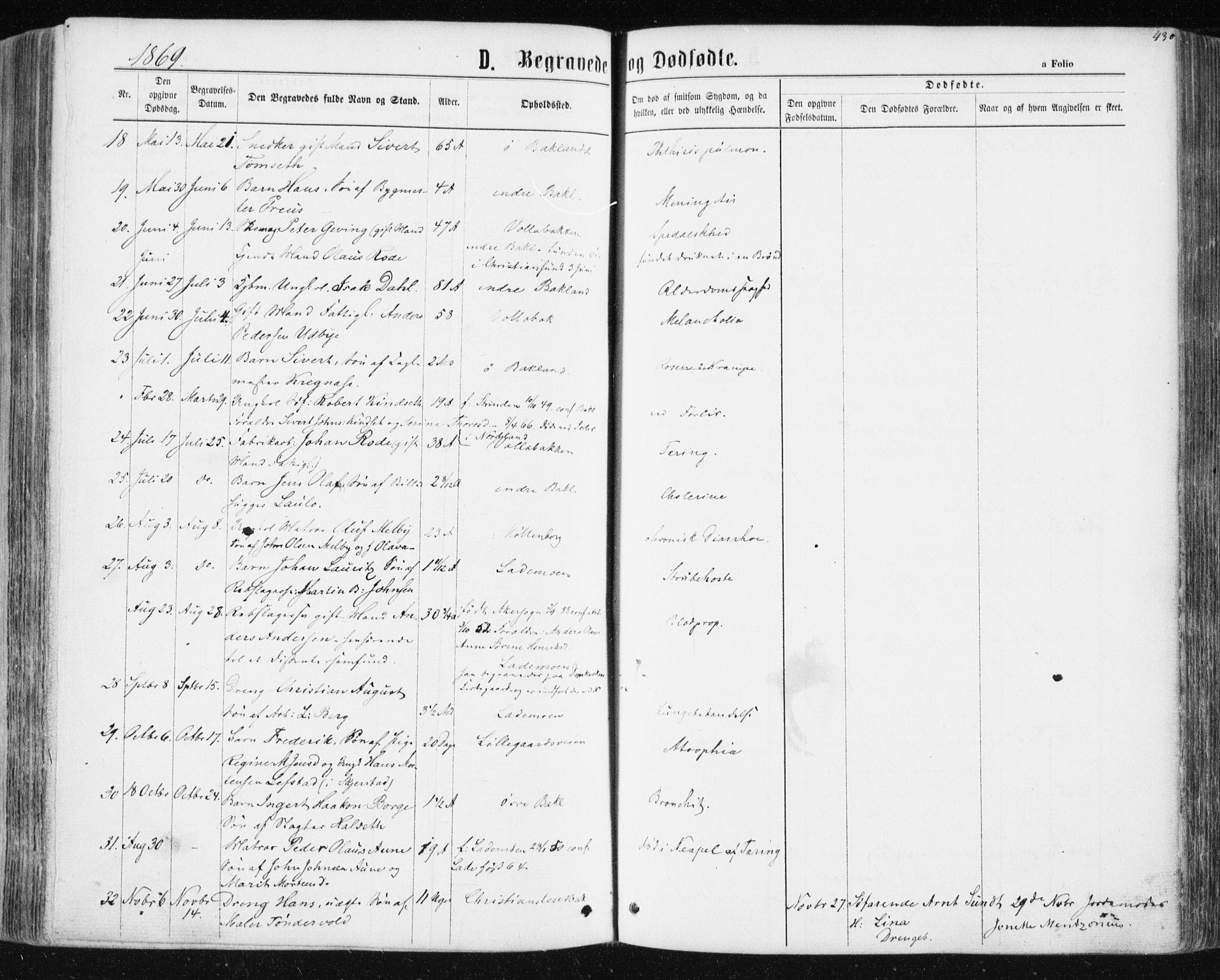 SAT, Ministerialprotokoller, klokkerbøker og fødselsregistre - Sør-Trøndelag, 604/L0186: Ministerialbok nr. 604A07, 1866-1877, s. 430