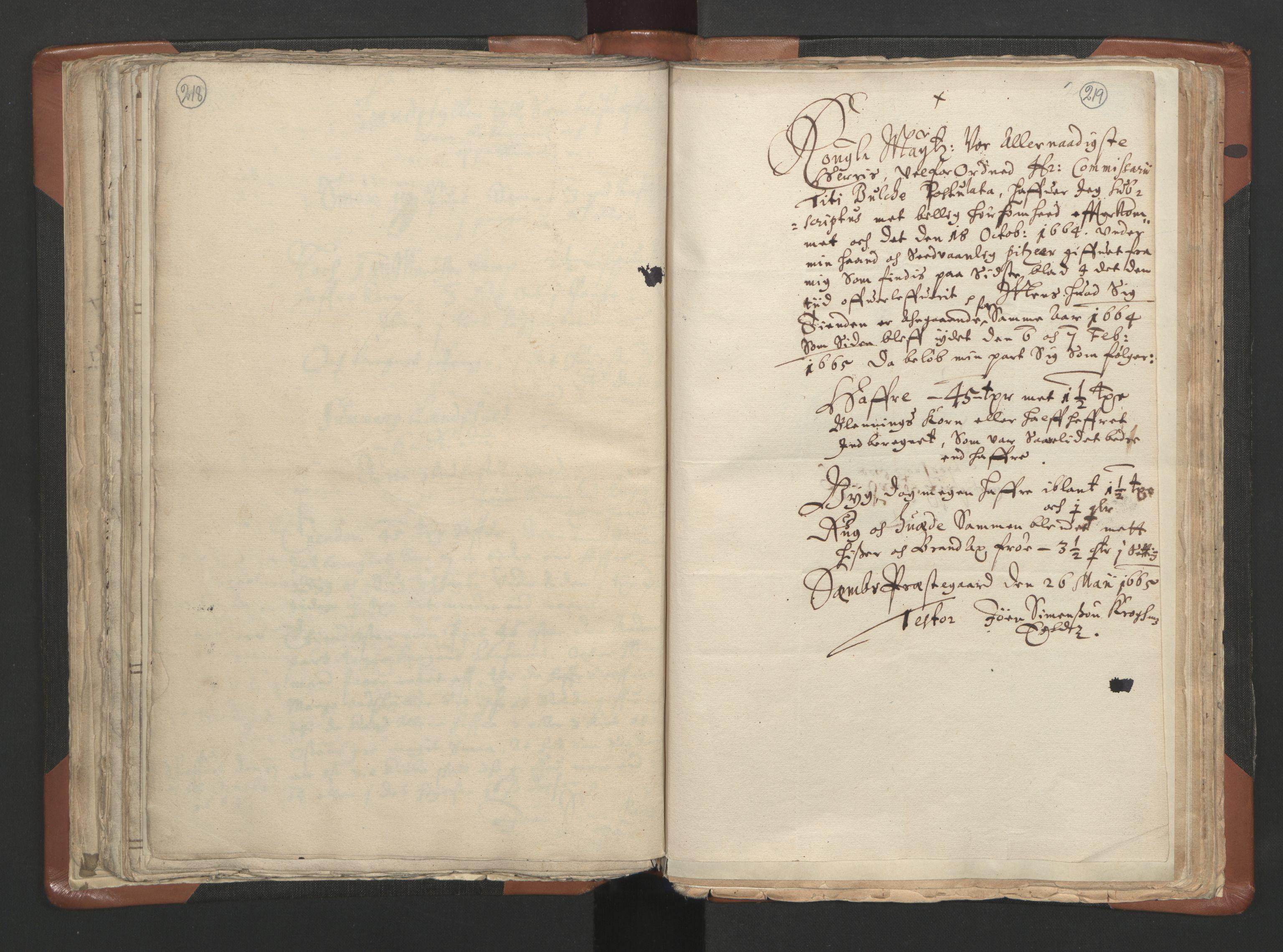 RA, Sogneprestenes manntall 1664-1666, nr. 10: Tønsberg prosti, 1664-1666, s. 218-219