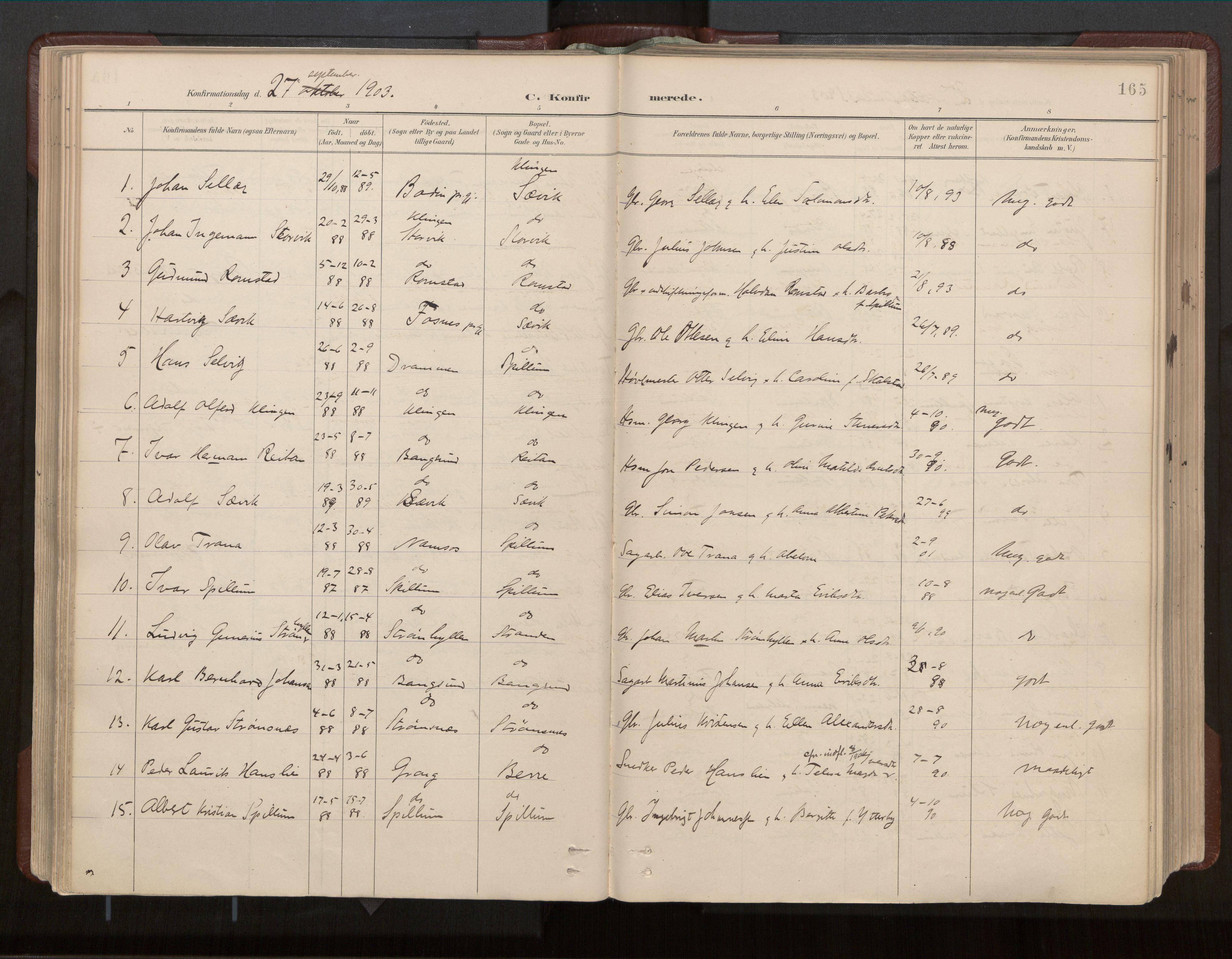 SAT, Ministerialprotokoller, klokkerbøker og fødselsregistre - Nord-Trøndelag, 770/L0589: Ministerialbok nr. 770A03, 1887-1929, s. 165