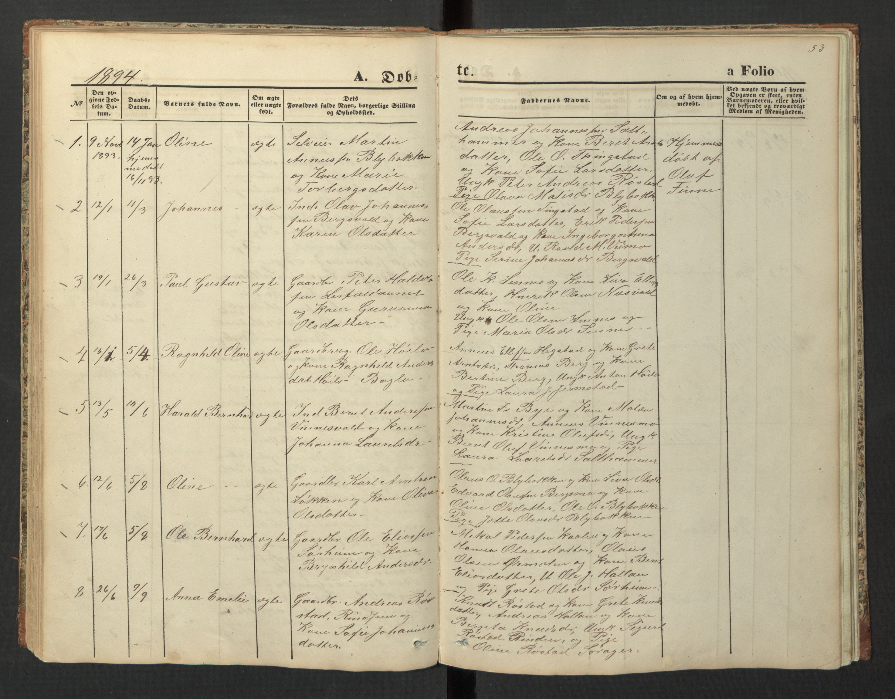 SAT, Ministerialprotokoller, klokkerbøker og fødselsregistre - Nord-Trøndelag, 726/L0271: Klokkerbok nr. 726C02, 1869-1897, s. 53