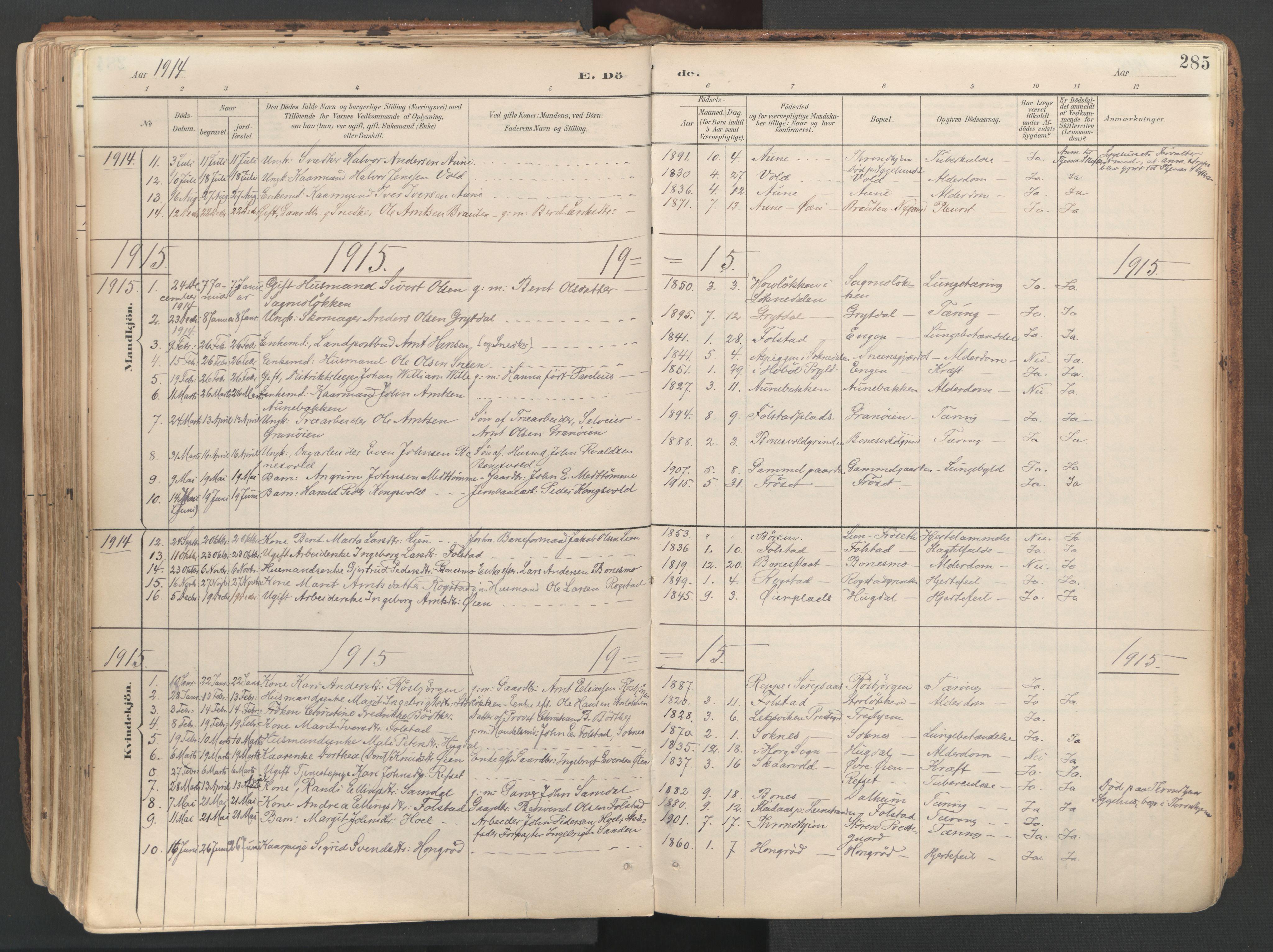 SAT, Ministerialprotokoller, klokkerbøker og fødselsregistre - Sør-Trøndelag, 687/L1004: Ministerialbok nr. 687A10, 1891-1923, s. 285