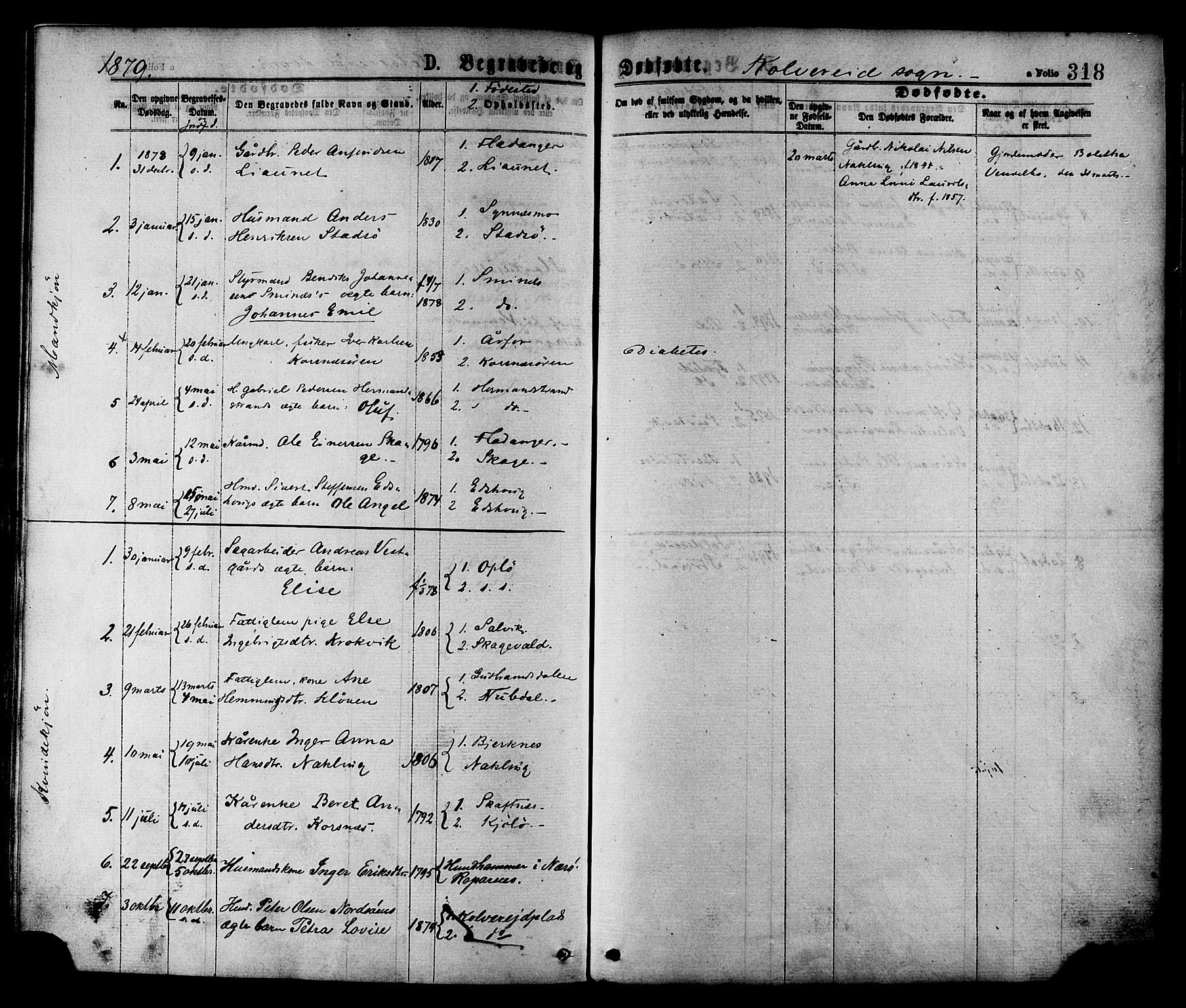 SAT, Ministerialprotokoller, klokkerbøker og fødselsregistre - Nord-Trøndelag, 780/L0642: Ministerialbok nr. 780A07 /1, 1874-1885, s. 318