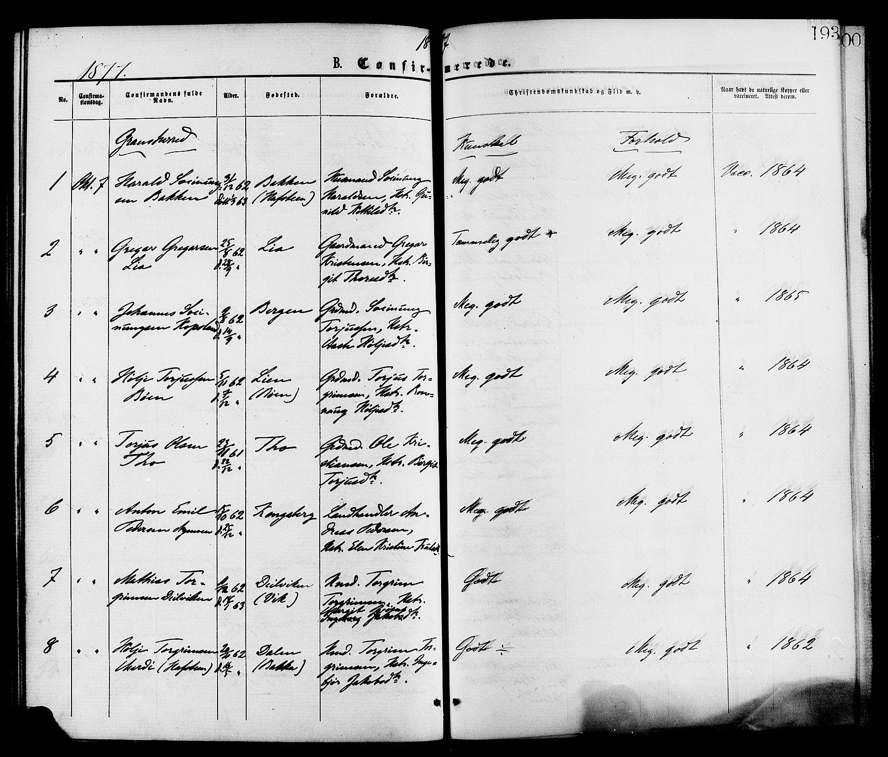SAKO, Gransherad kirkebøker, F/Fa/L0004: Ministerialbok nr. I 4, 1871-1886, s. 193