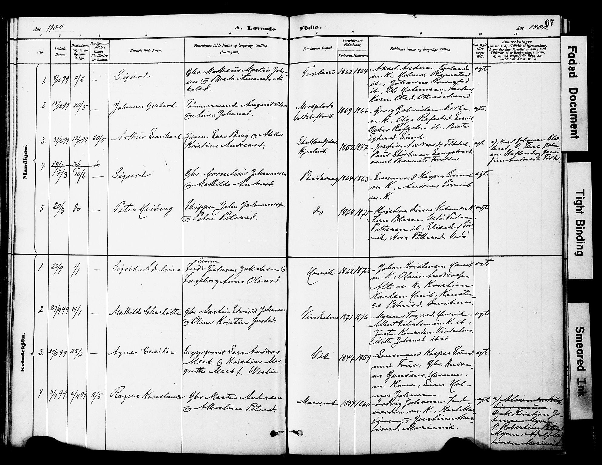 SAT, Ministerialprotokoller, klokkerbøker og fødselsregistre - Nord-Trøndelag, 774/L0628: Ministerialbok nr. 774A02, 1887-1903, s. 67
