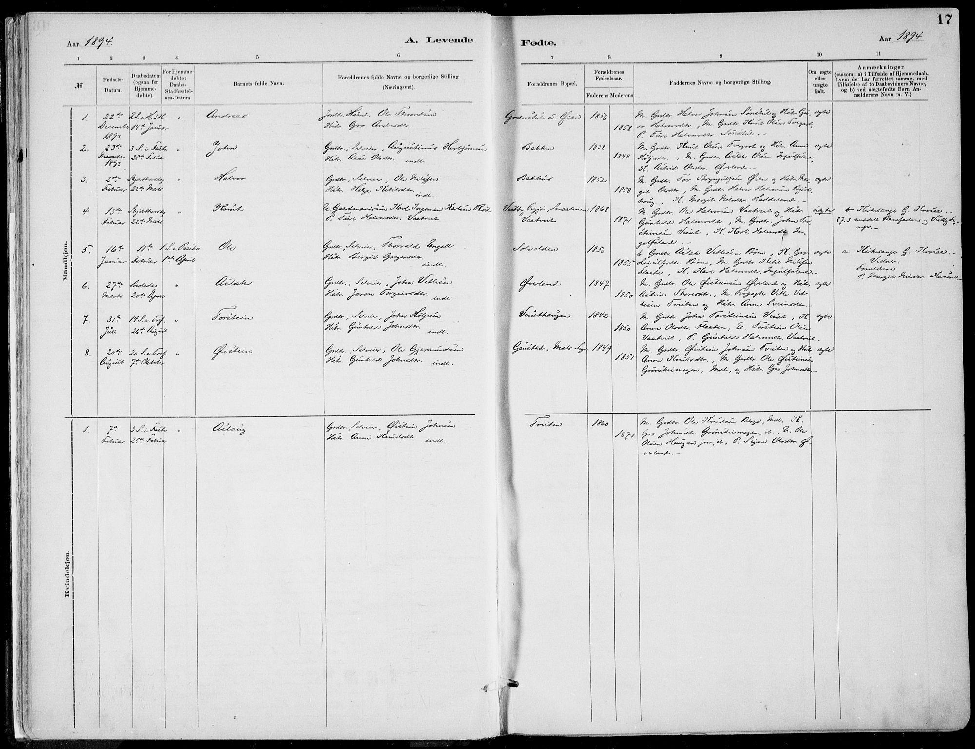 SAKO, Rjukan kirkebøker, F/Fa/L0001: Ministerialbok nr. 1, 1878-1912, s. 17