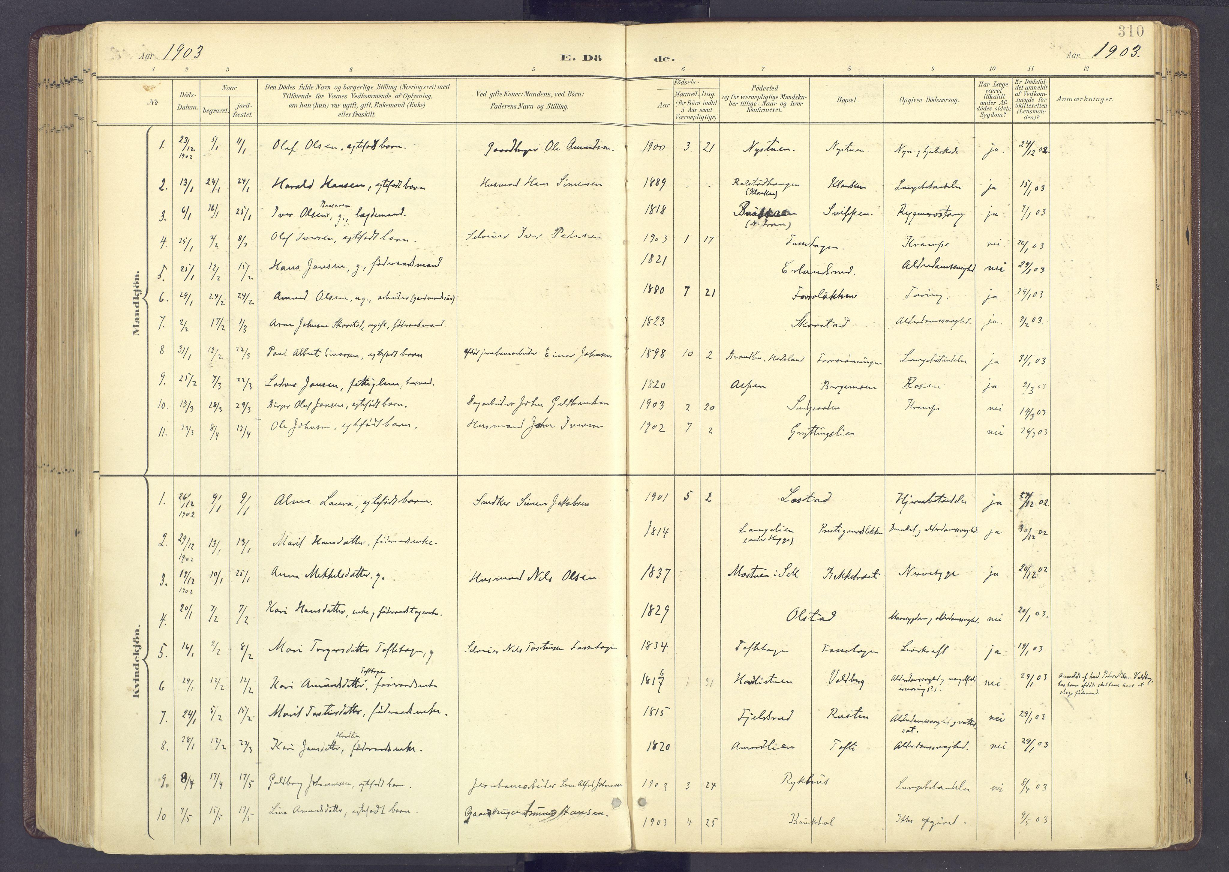 SAH, Sør-Fron prestekontor, H/Ha/Haa/L0004: Ministerialbok nr. 4, 1898-1919, s. 310