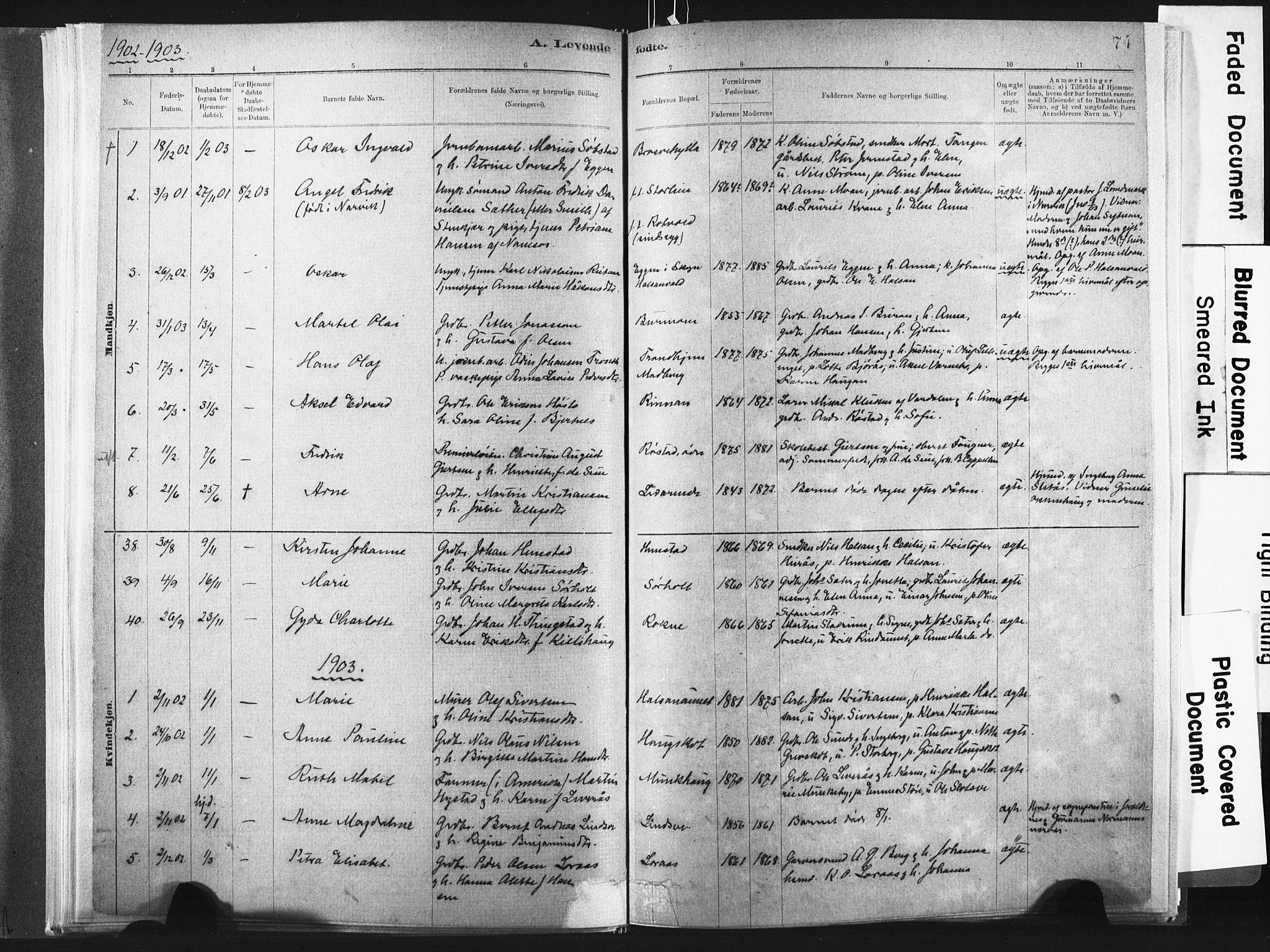 SAT, Ministerialprotokoller, klokkerbøker og fødselsregistre - Nord-Trøndelag, 721/L0207: Ministerialbok nr. 721A02, 1880-1911, s. 74