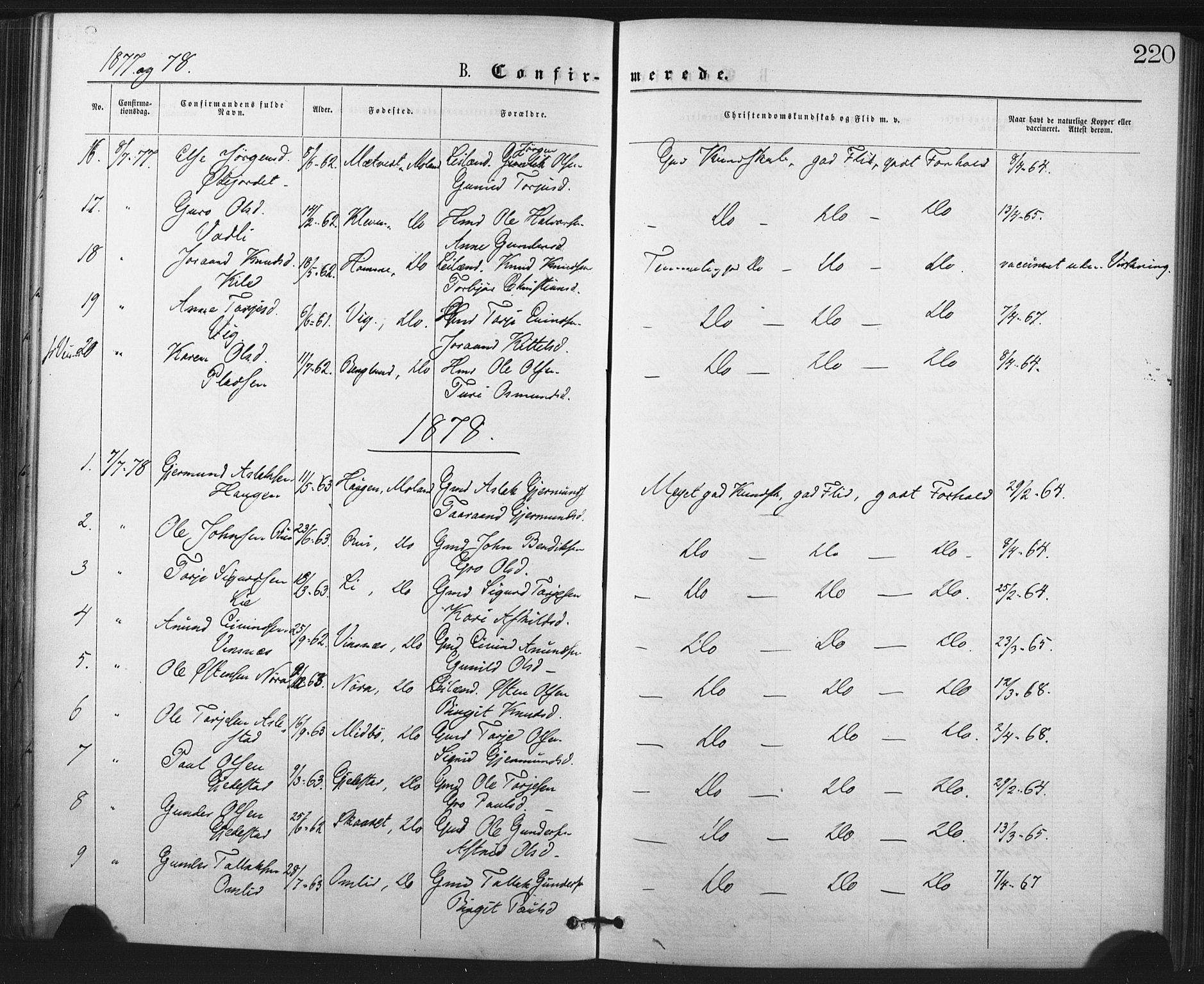 SAKO, Fyresdal kirkebøker, F/Fa/L0006: Ministerialbok nr. I 6, 1872-1886, s. 220