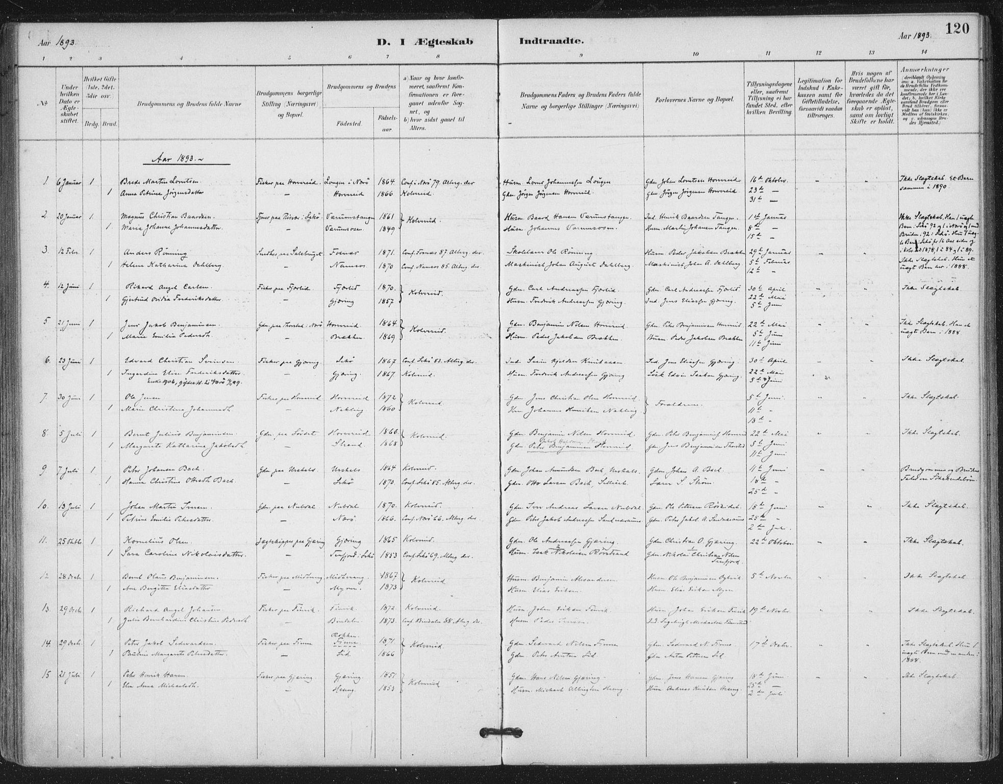 SAT, Ministerialprotokoller, klokkerbøker og fødselsregistre - Nord-Trøndelag, 780/L0644: Ministerialbok nr. 780A08, 1886-1903, s. 120