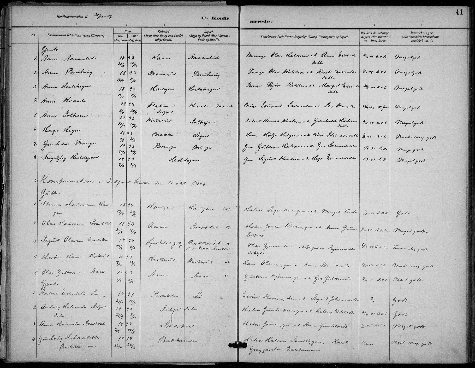 SAKO, Seljord kirkebøker, F/Fb/L0002: Ministerialbok nr. II 2, 1887-1917, s. 41