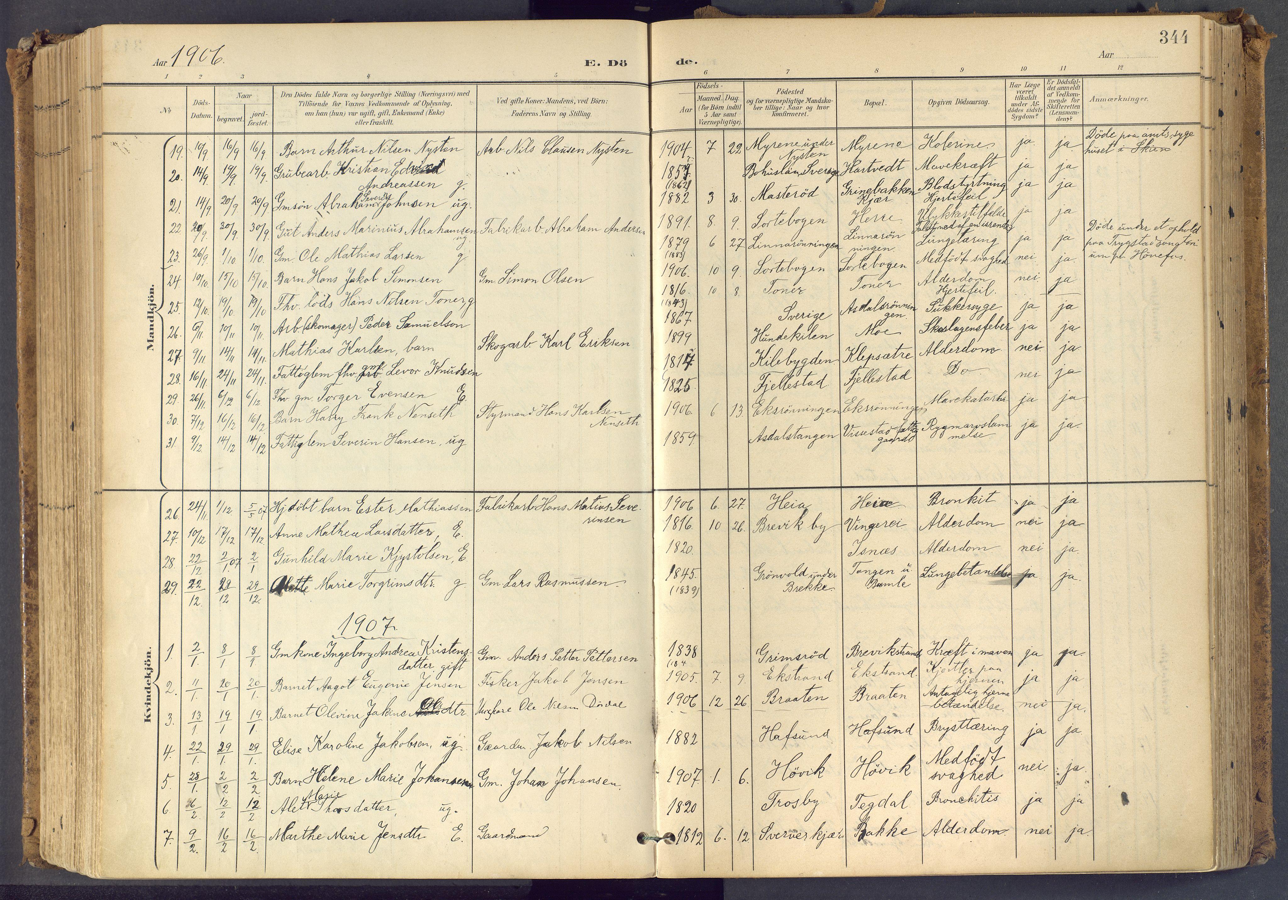 SAKO, Bamble kirkebøker, F/Fa/L0009: Ministerialbok nr. I 9, 1901-1917, s. 344