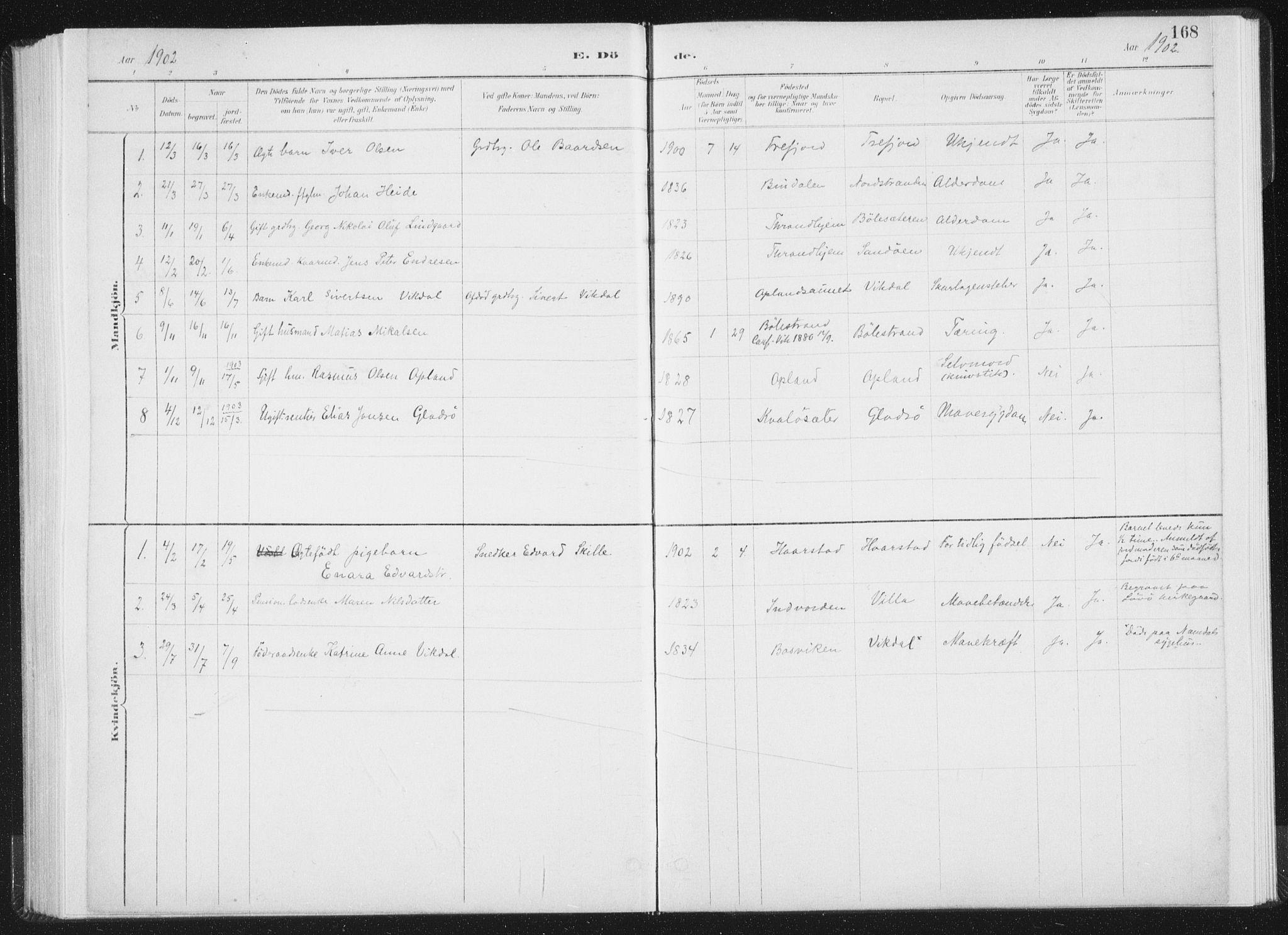 SAT, Ministerialprotokoller, klokkerbøker og fødselsregistre - Nord-Trøndelag, 771/L0597: Ministerialbok nr. 771A04, 1885-1910, s. 168